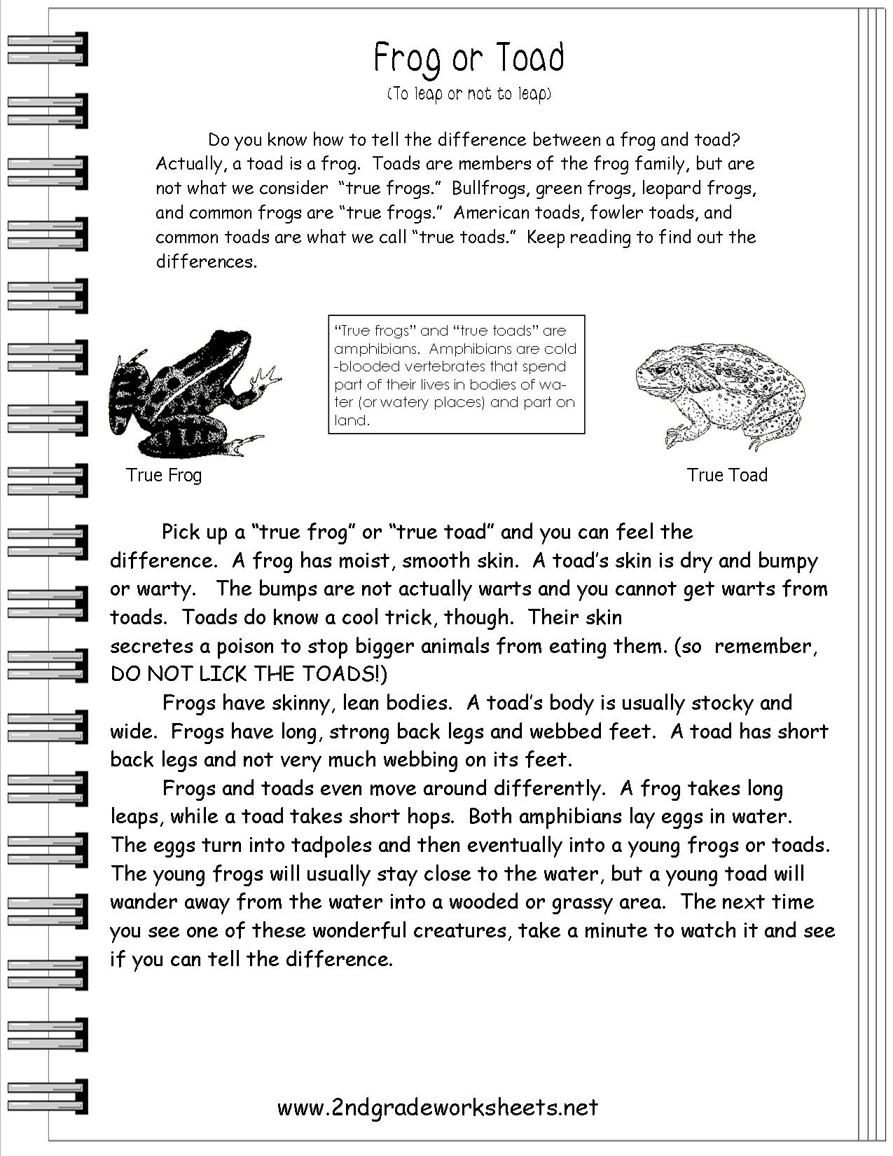 Amazing Free Printable Reading Comprehension Worksheets