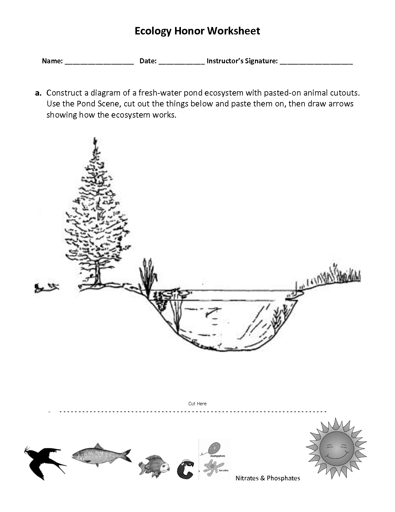 13 Best Images Of Basic Cutting Skills Worksheet
