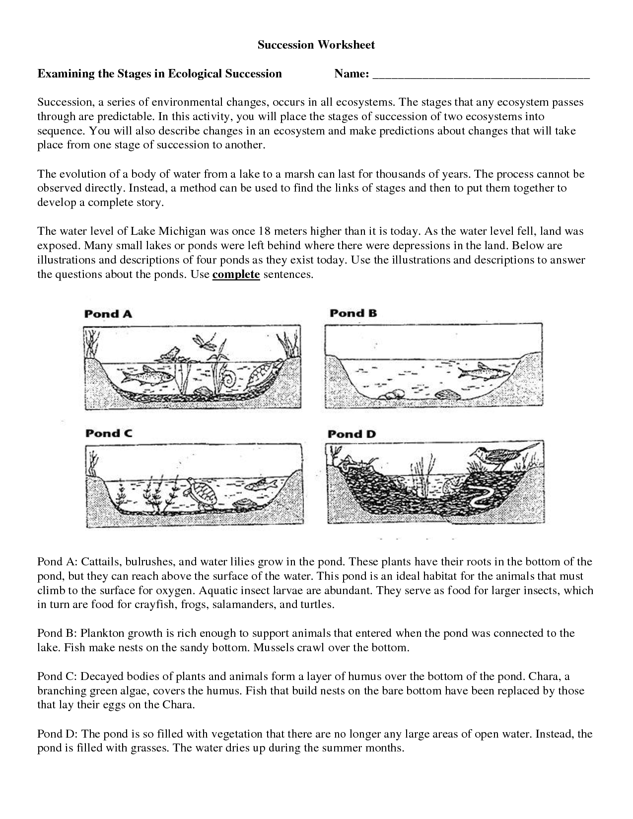 12 Best Images Of Ecological Succession Worksheet
