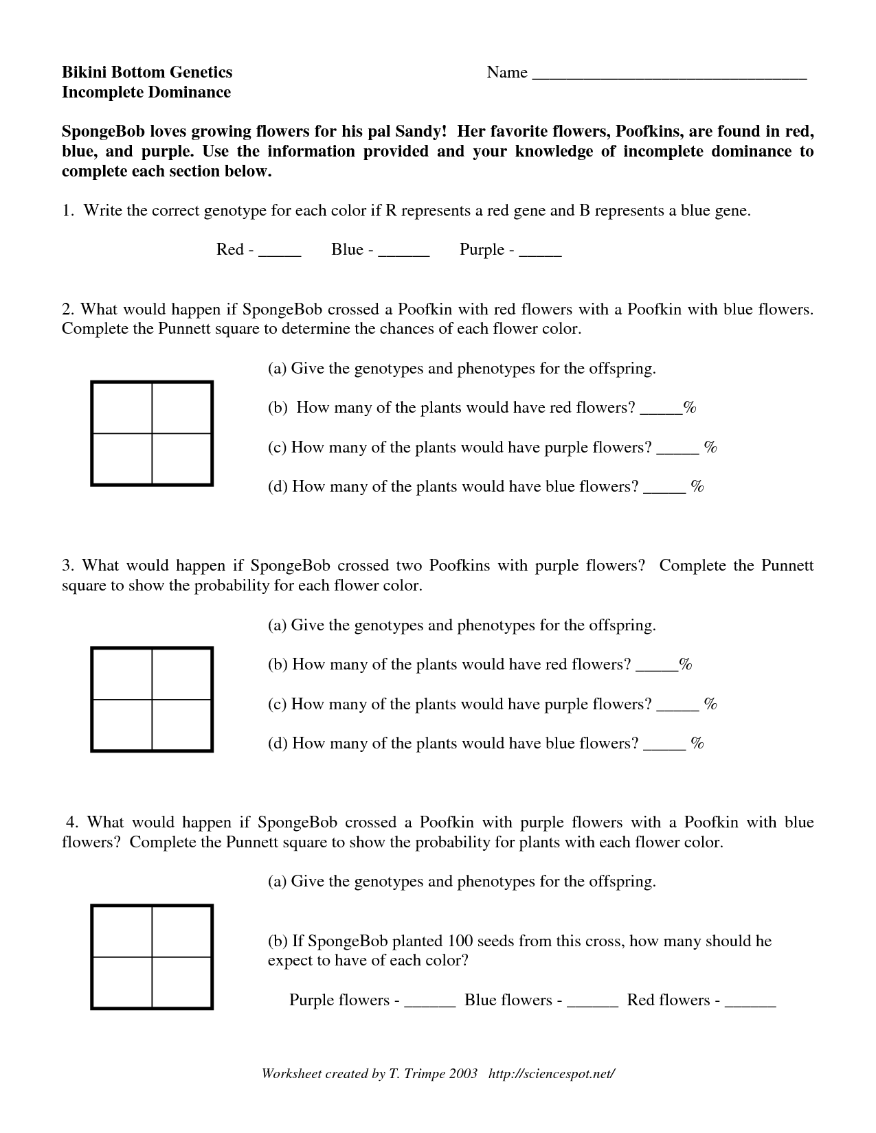 16 Best Images Of Incomplete And Codominance Worksheet Answers