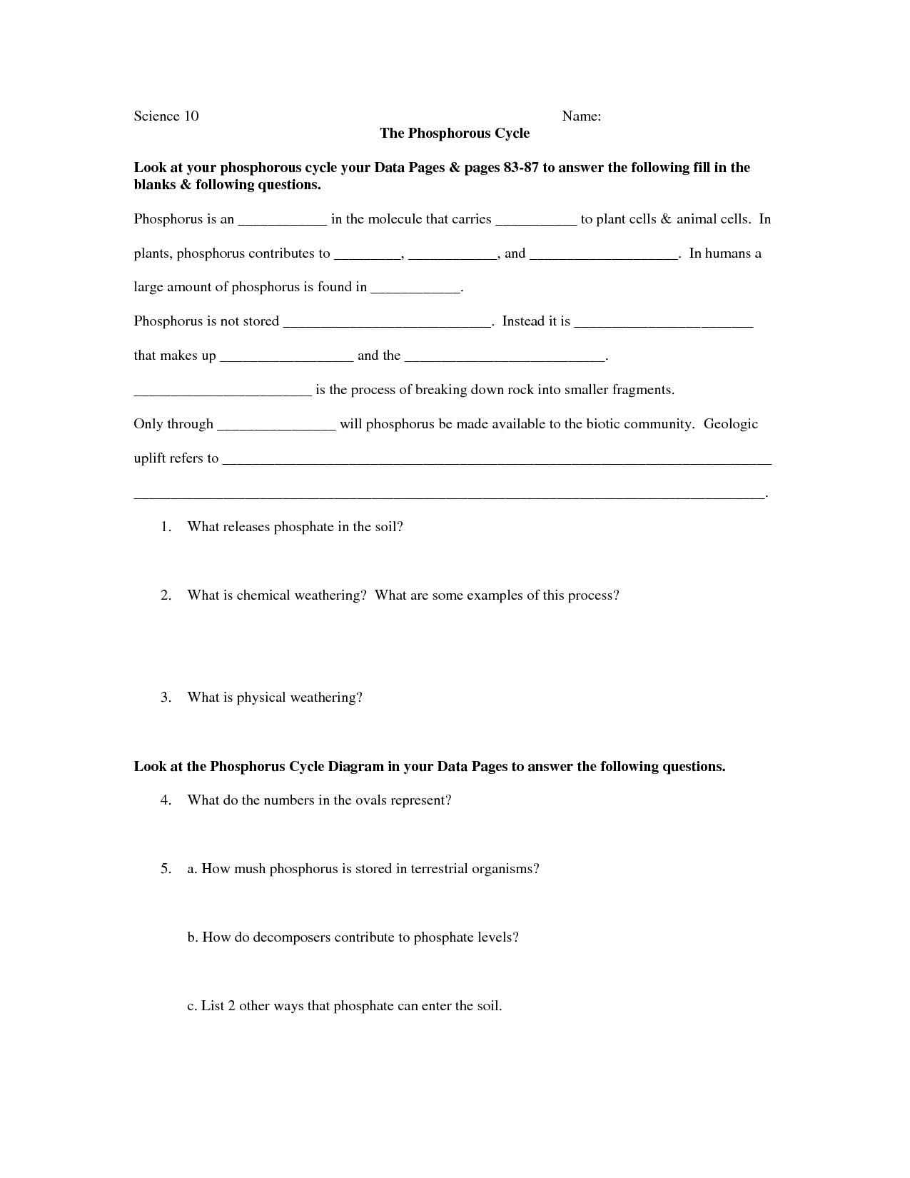 15 Best Images Of Carbon Cycle Worksheet