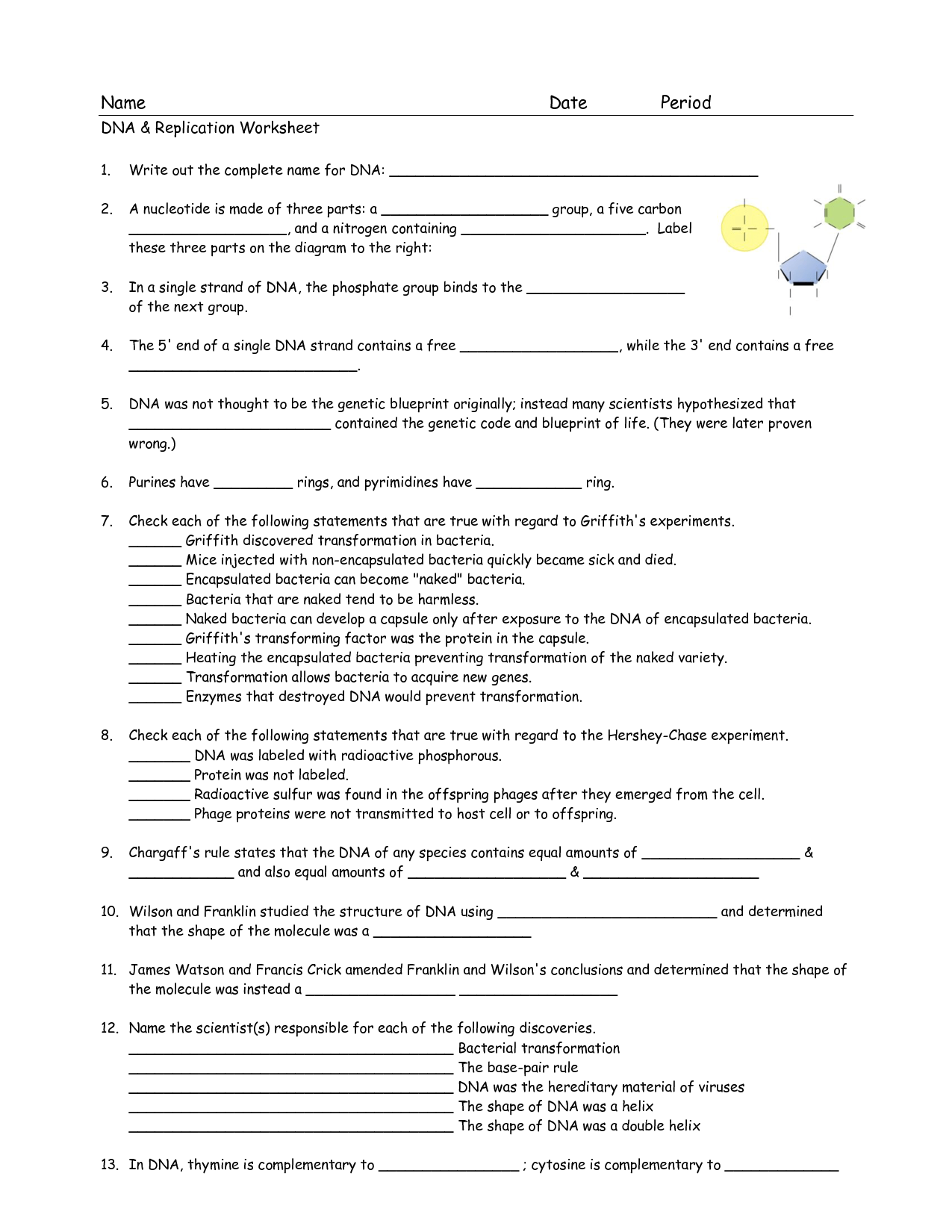 30 Dna And Genes Chapter 11 Worksheet Answers