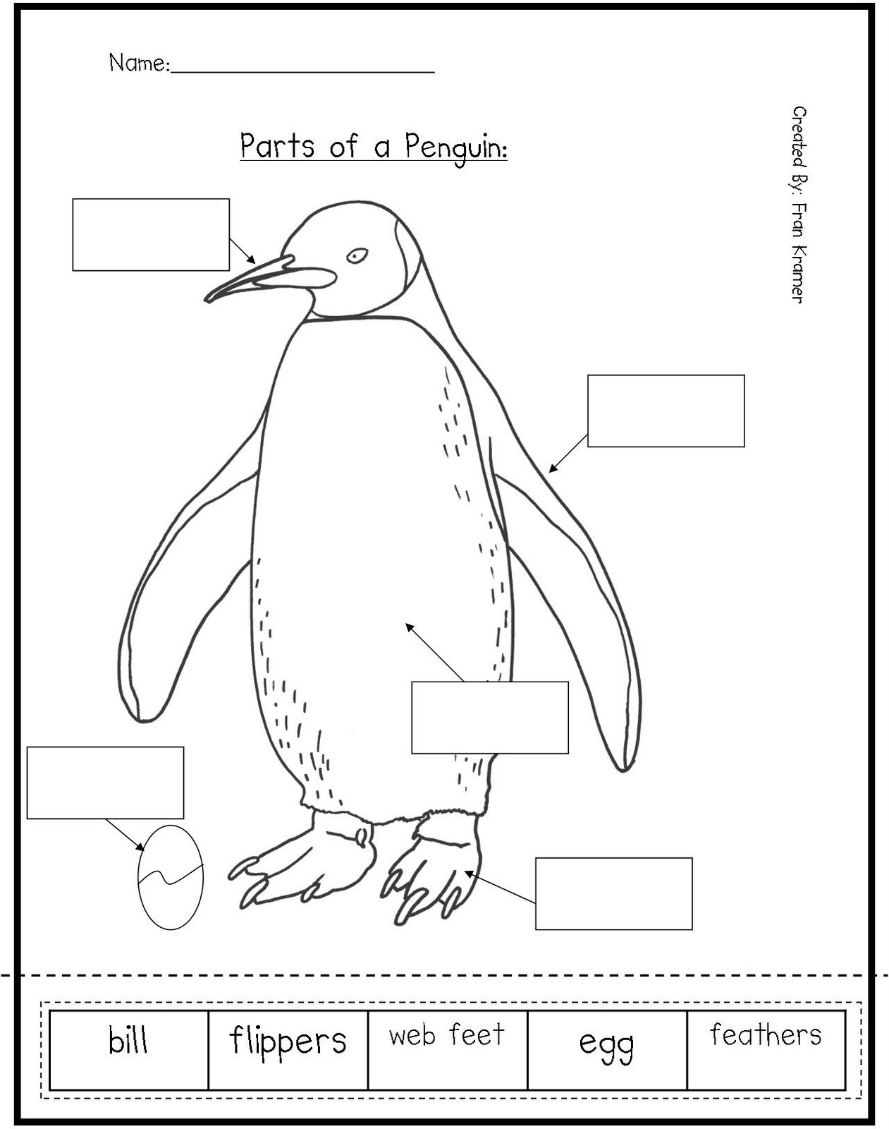 Parts Bird Worksheet