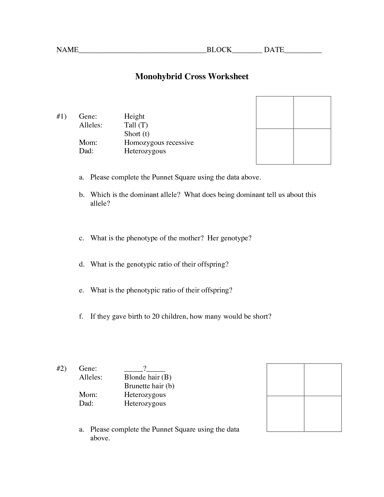 15 Best Images Of Printable Genetics Worksheets