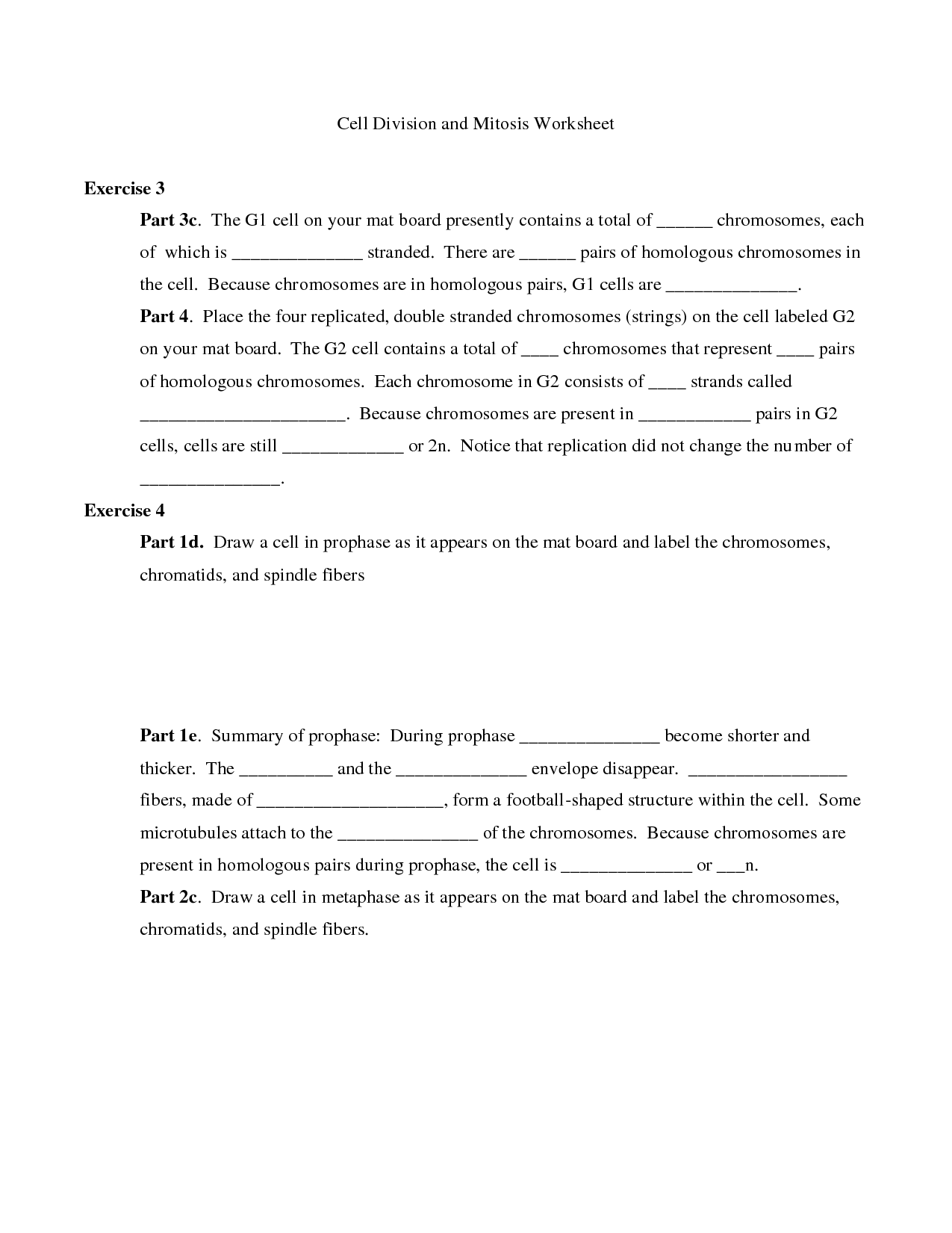 35 51 Cell Division And The Cell Cycle Worksheet Answers