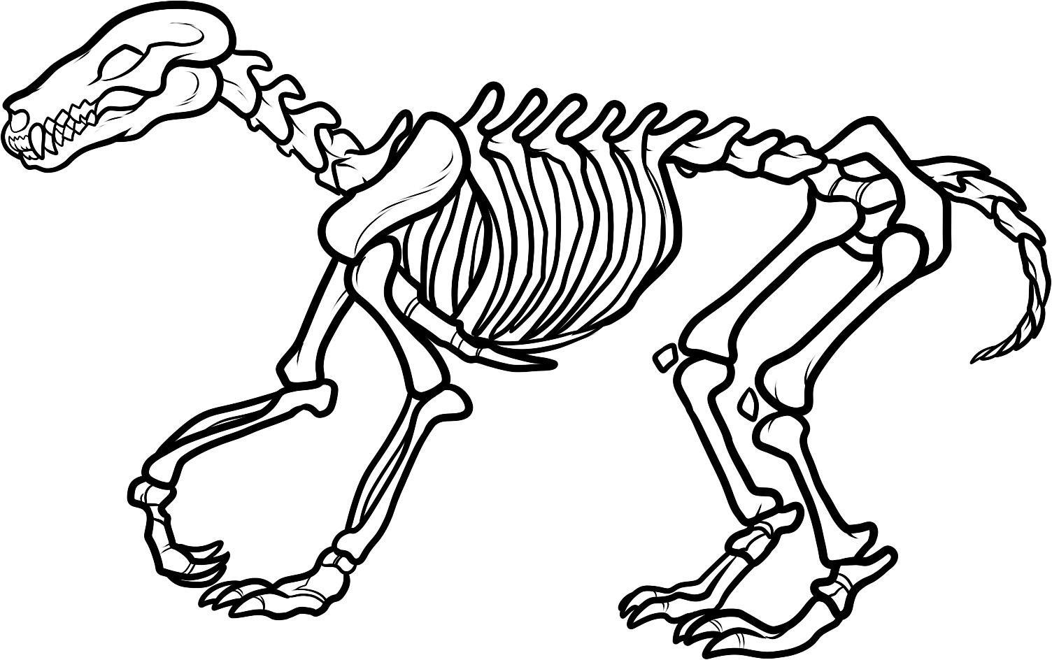 10 Best Images Of Dinosaur Skeleton Worksheet