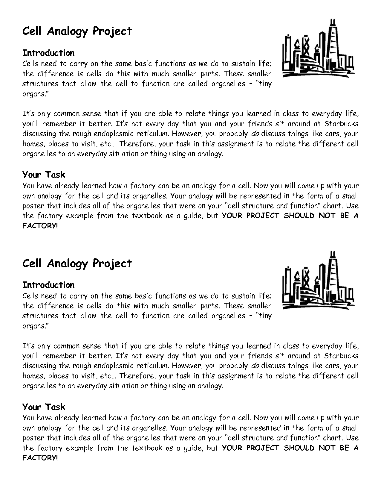 8 Best Images Of 5th Grade Cell Structure Worksheet