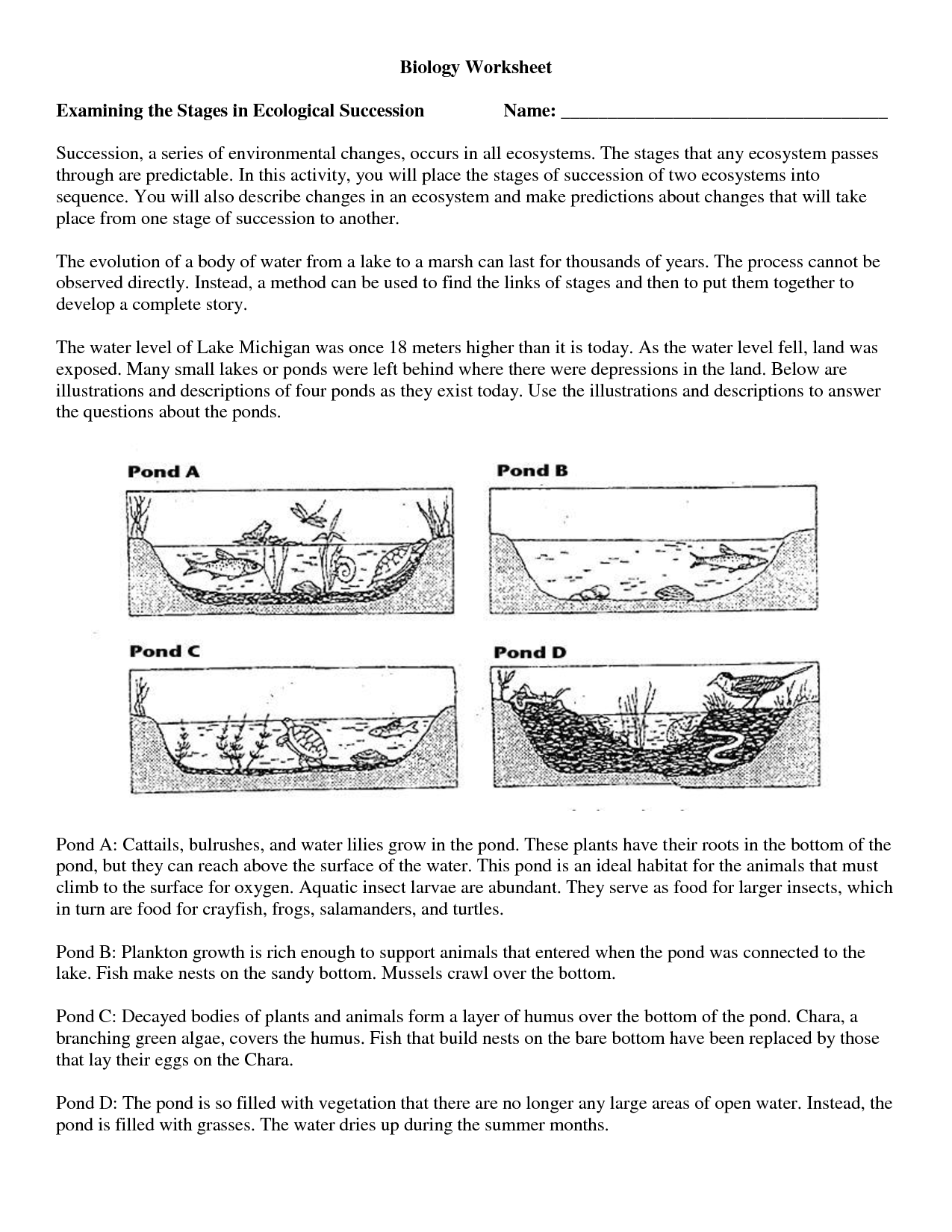 Ecology Worksheet For 9th Biology