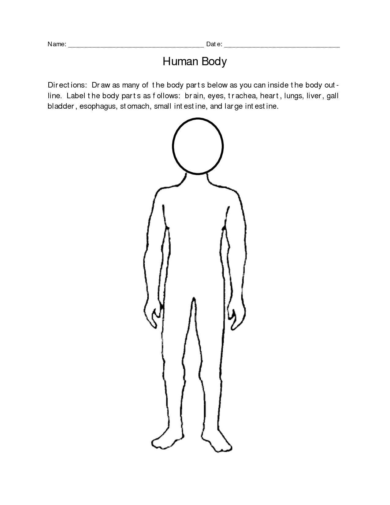 Regions Body Worksheet
