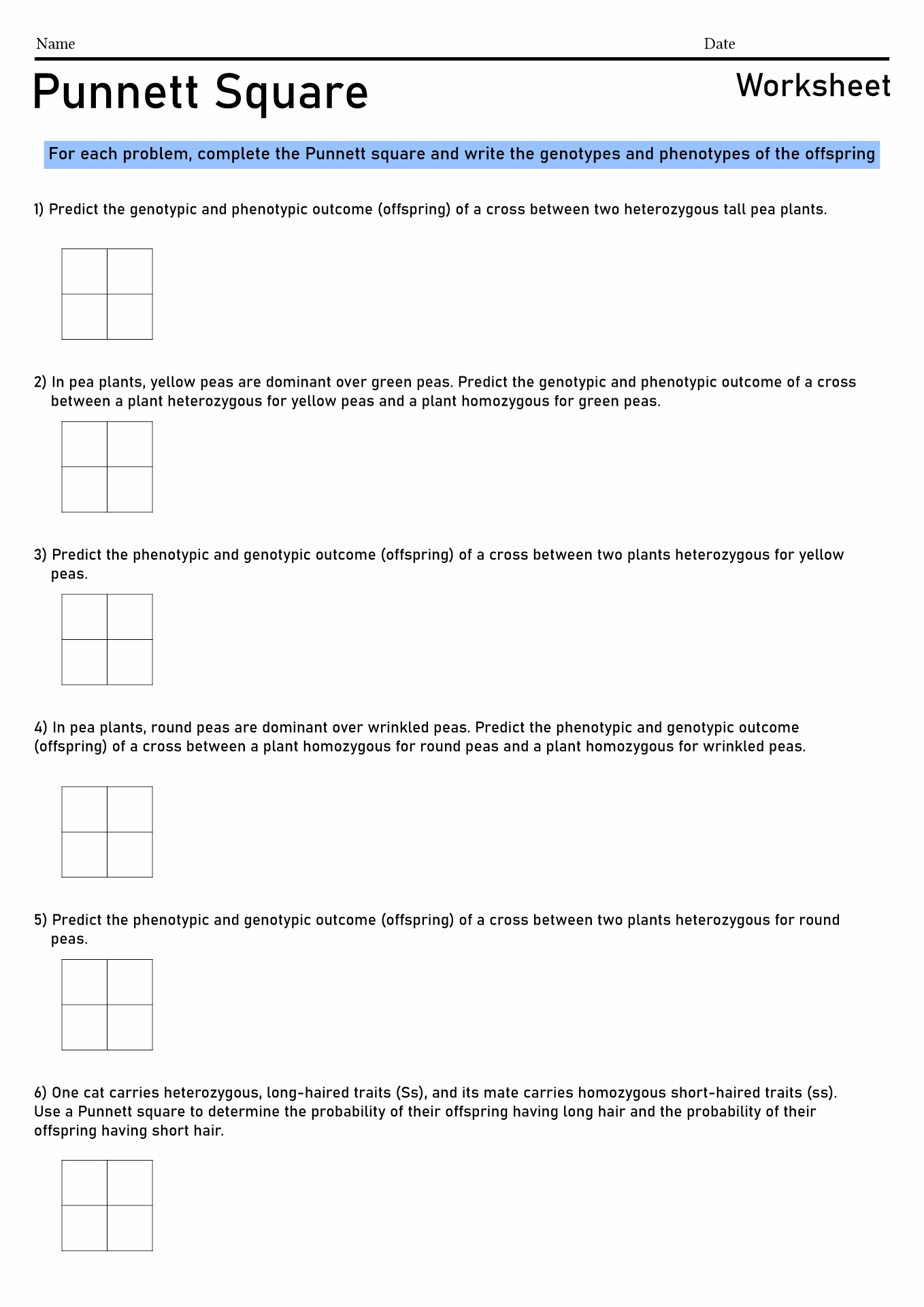 Pea Plants Dihybrid Crosses Worksheet