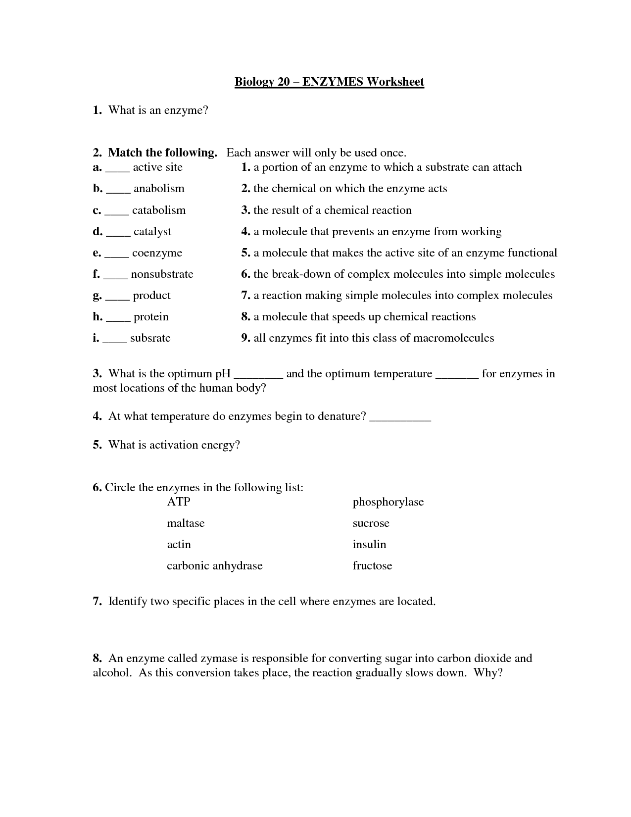 Enzyme Reaction Rates Worksheet Answer Key Kidz Activities
