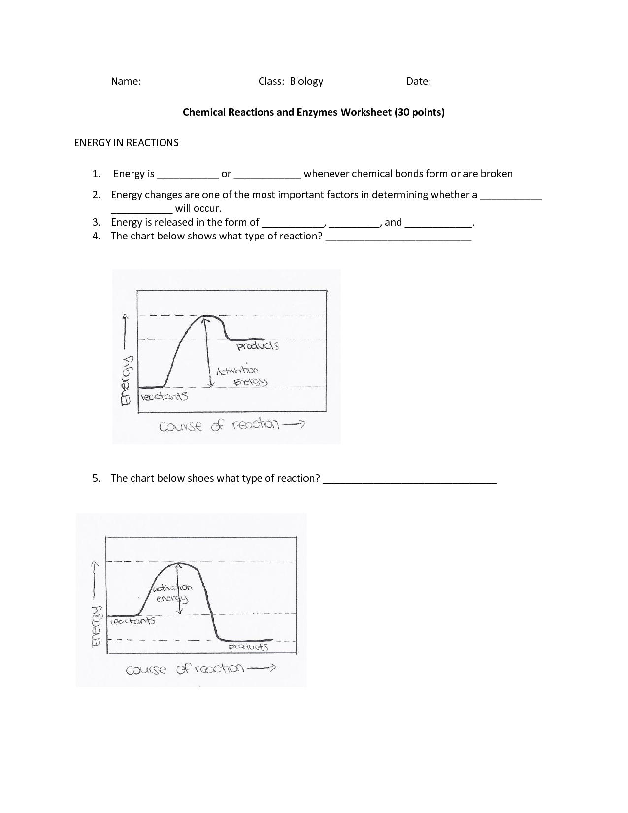 33 Enzyme Reactions Worksheet Answers
