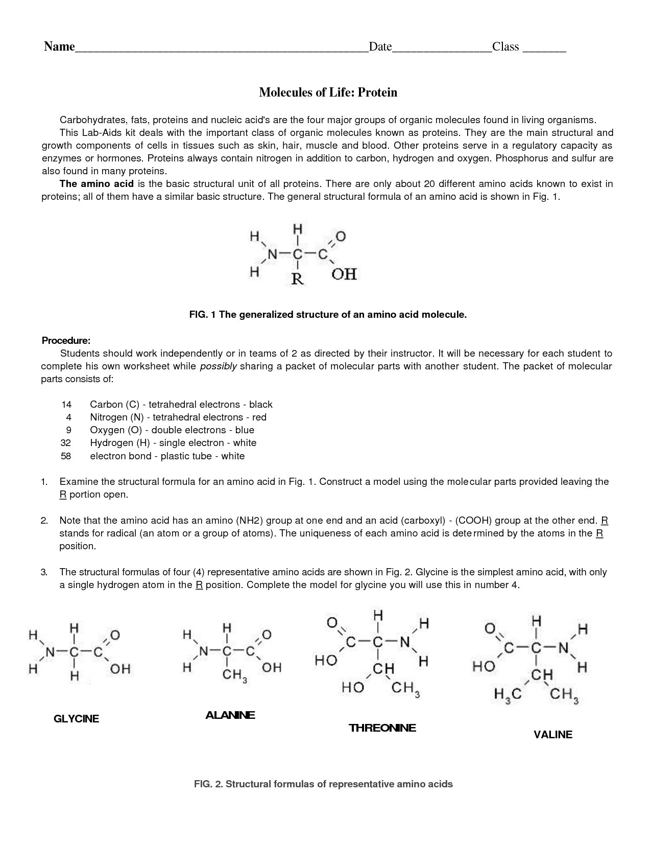 16 Best Images Of Carbohydrates Worksheet Student