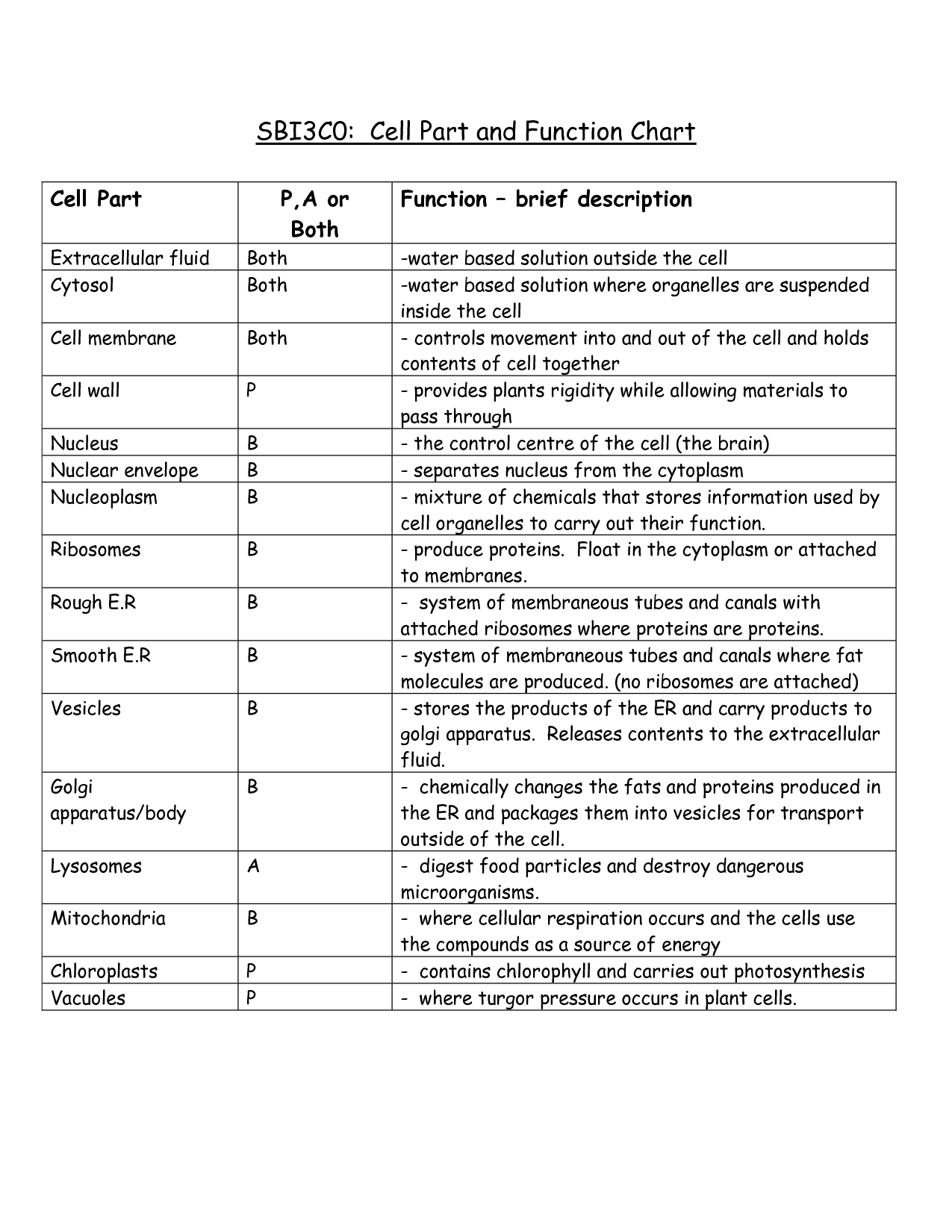 16 Best Images Of Cell Parts And Functions Worksheet