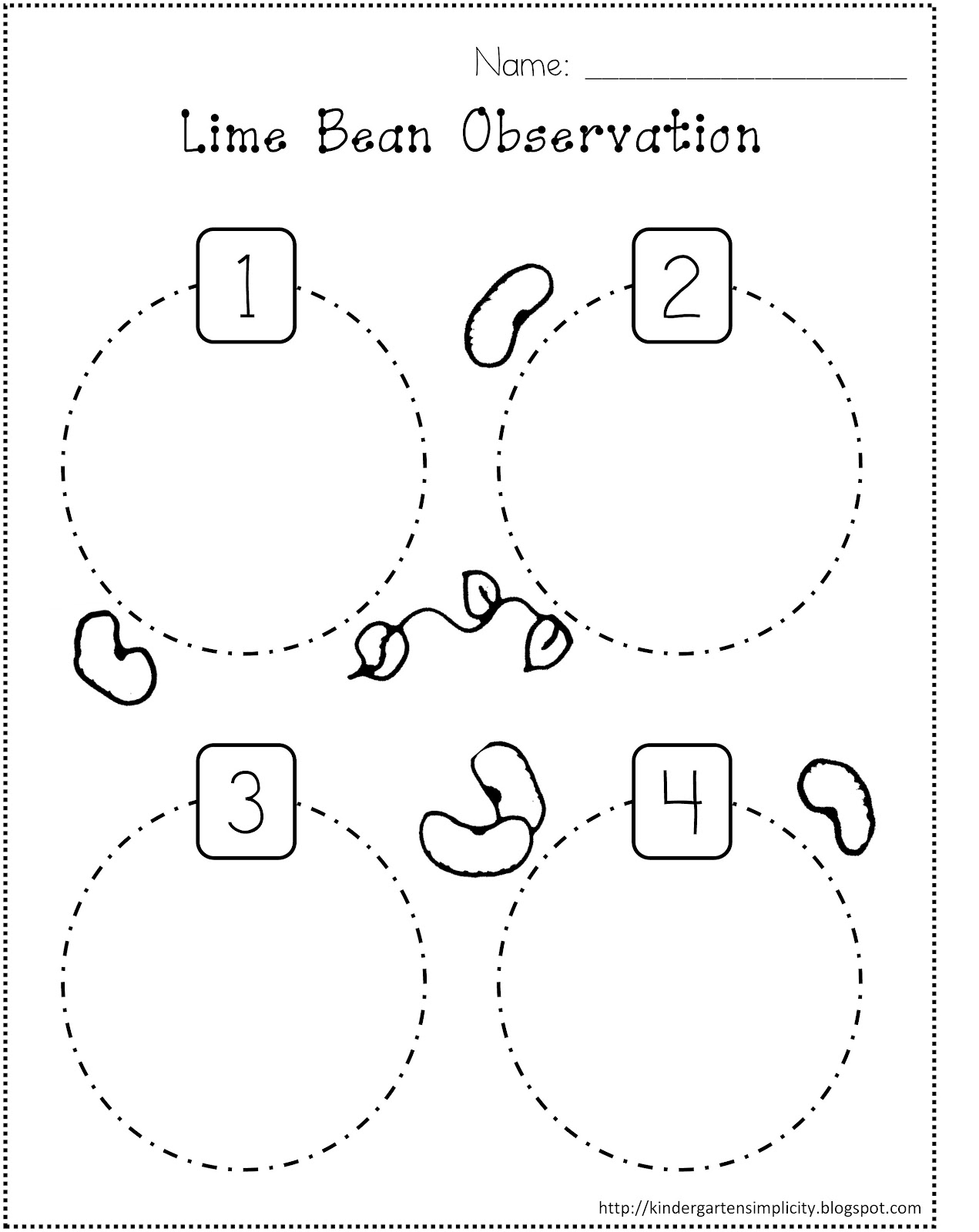 13 Best Images Of Plant Cycle Worksheet