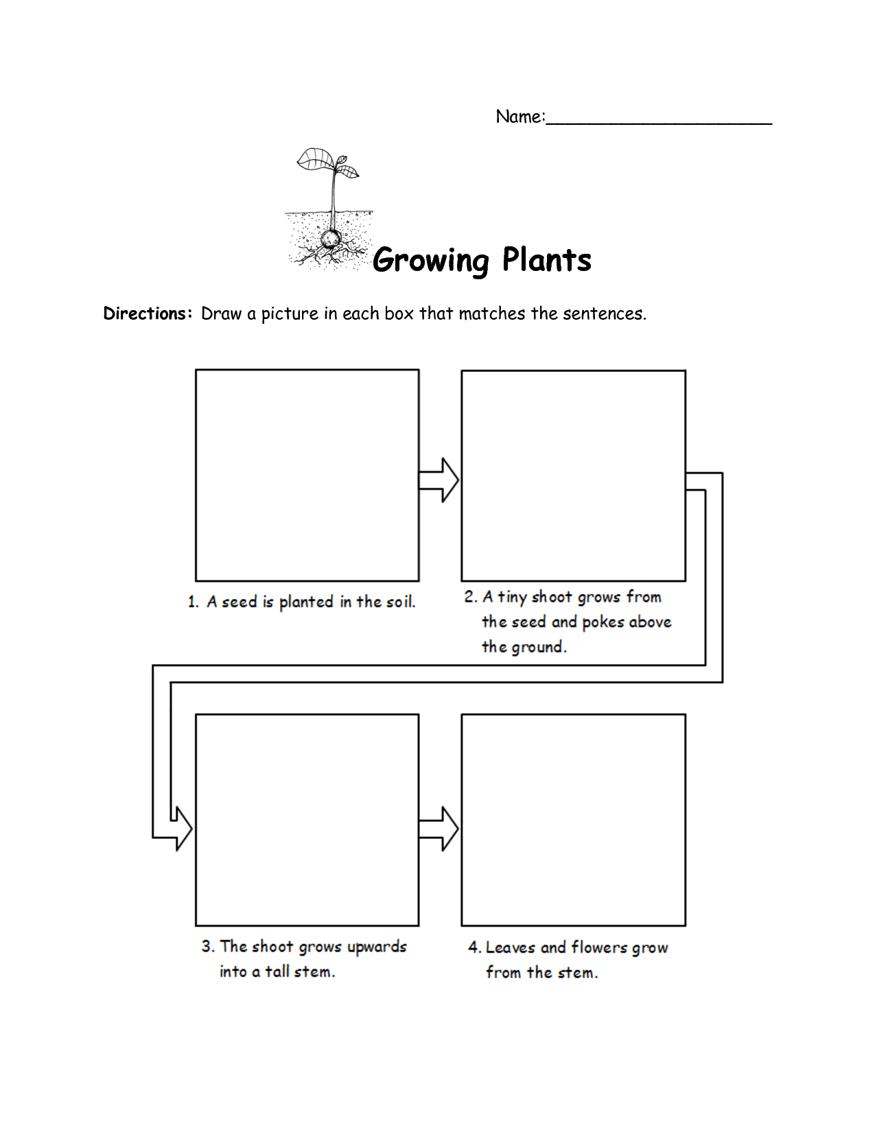 15 Best Images Of Plant Needs Worksheet