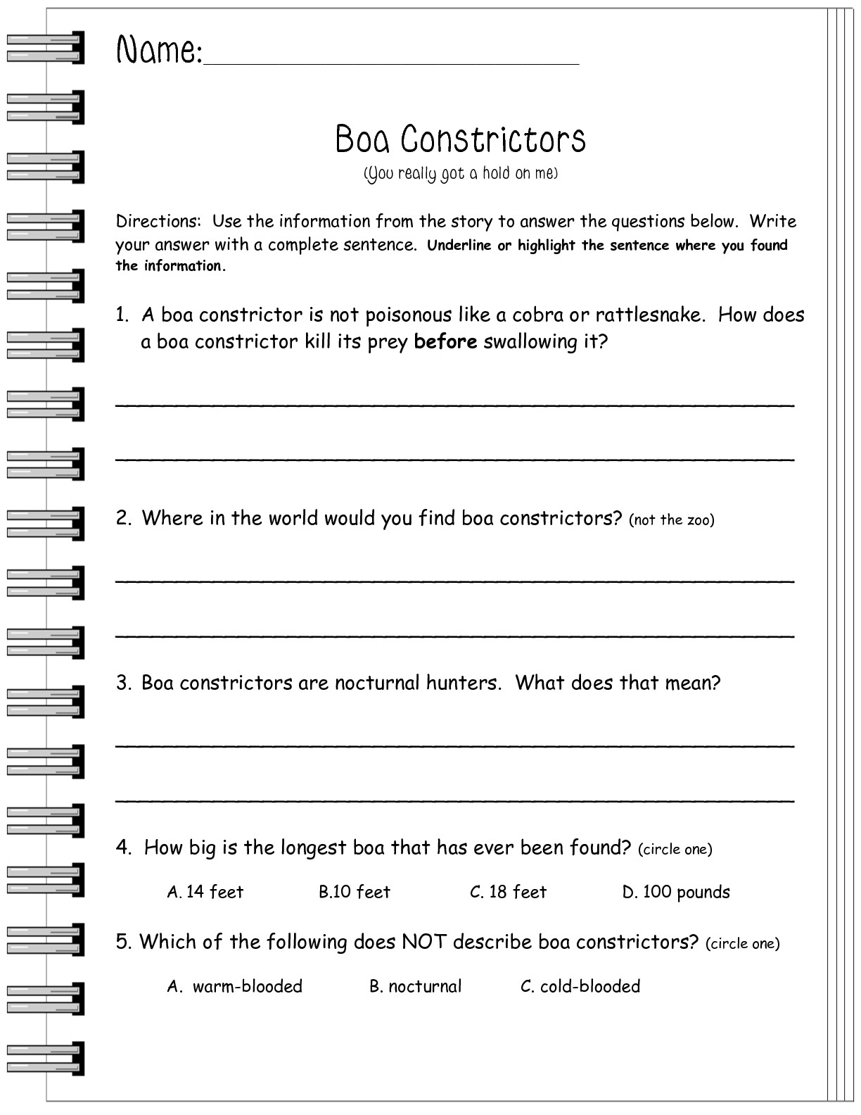 18 Best Images Of Informational Text Worksheets