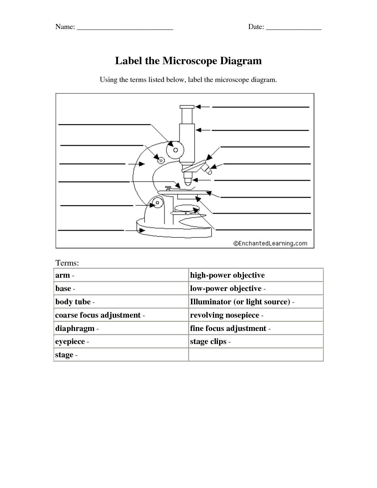 32 Parts Of A Compound Light Microscope Worksheet