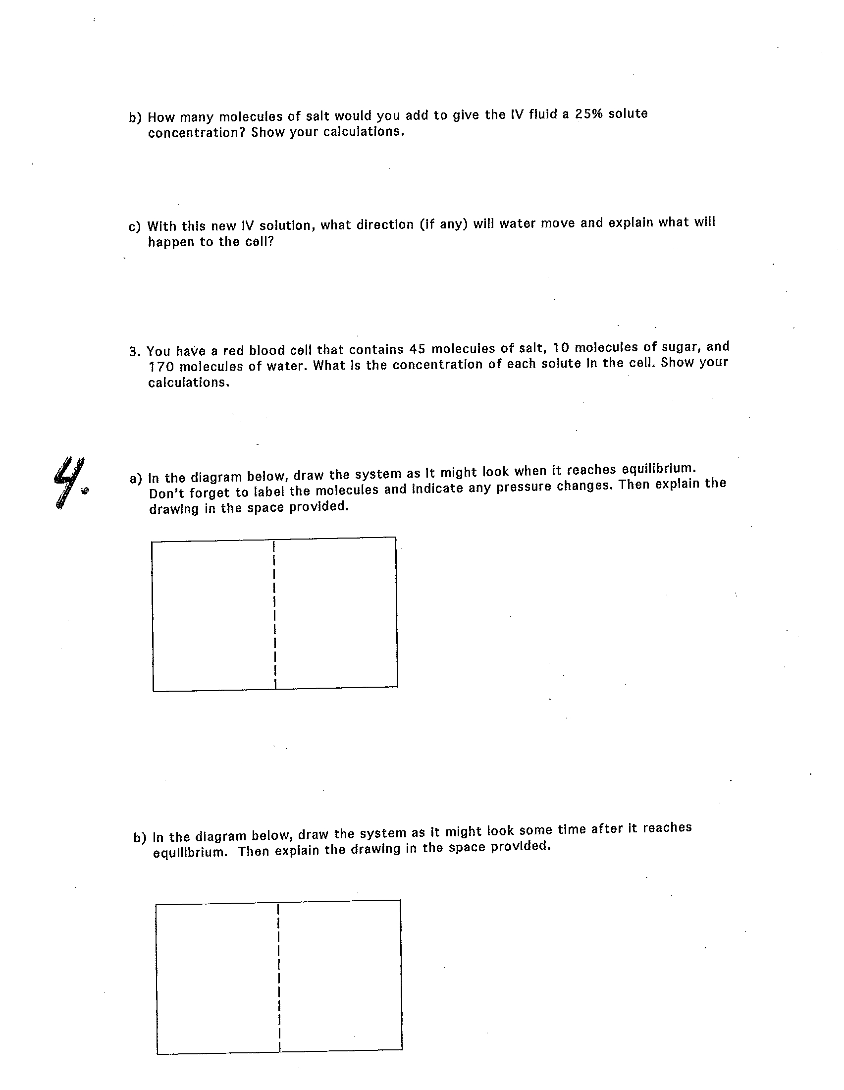 15 Best Images Of Diffusion And Osmosis Worksheet Key