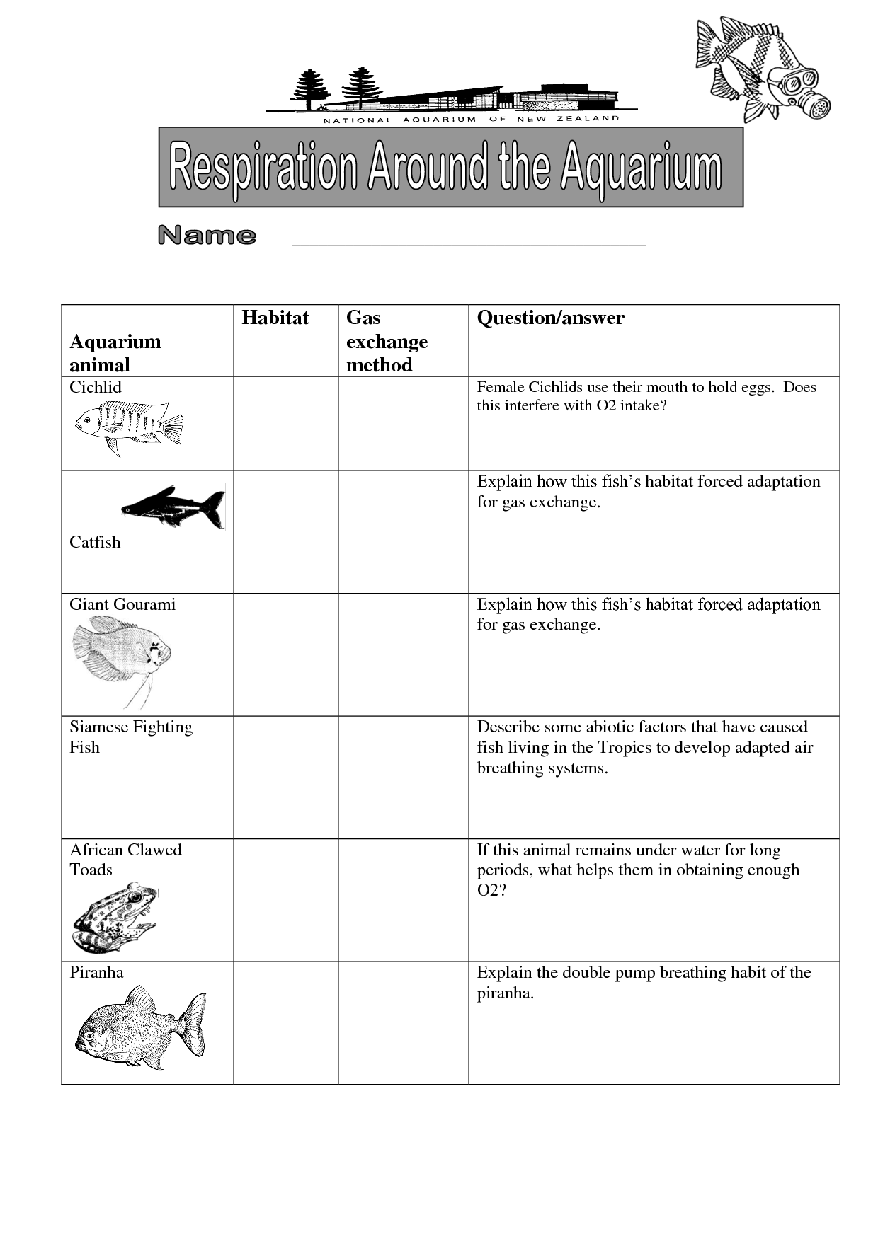 Worksheet Adaptation Worksheet Carlos Lomas Worksheet For Everyone