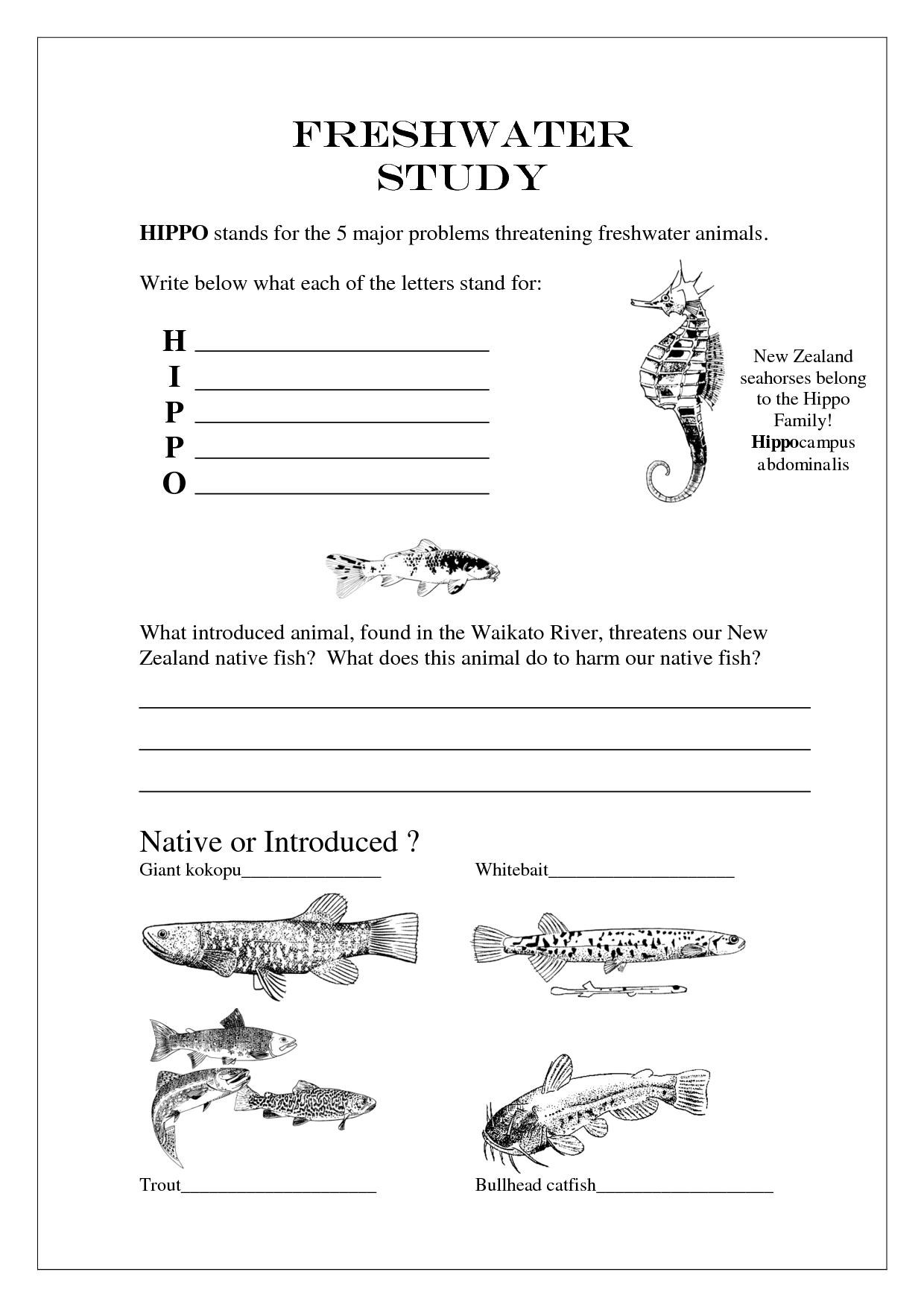 15 Best Images Of Worksheets On Layers Of Soil
