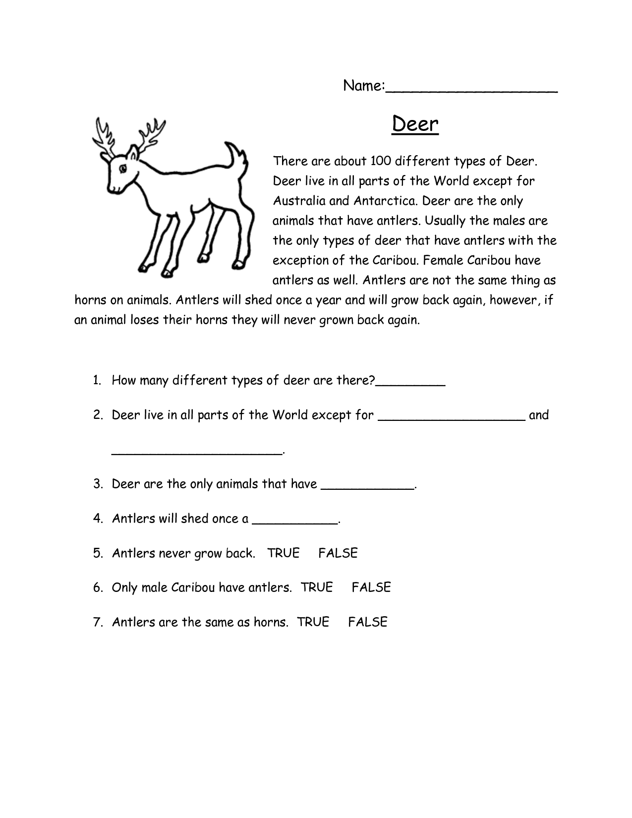 Middle School Reading Worksheets