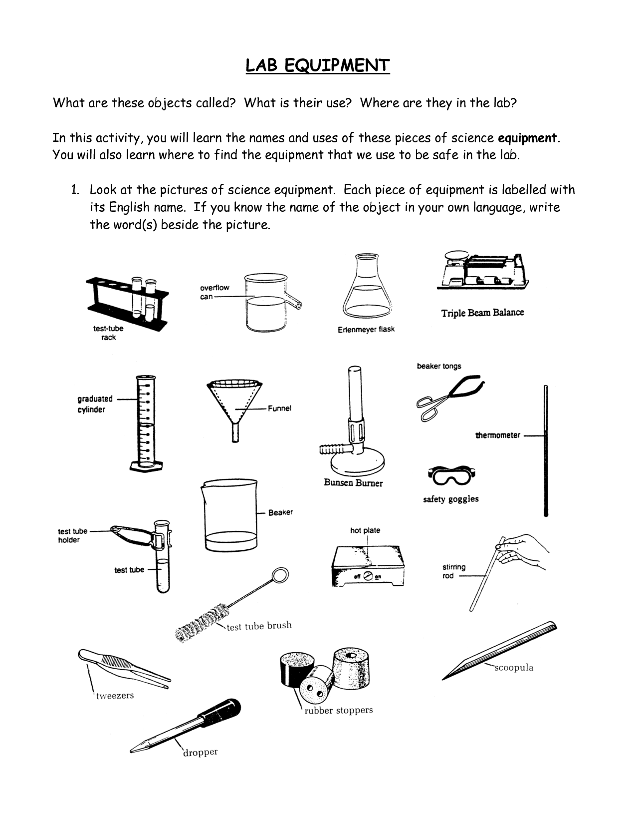 12 Best Images Of Biology Lab Equipment Worksheet