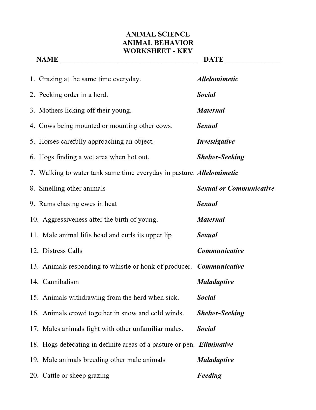 14 Best Images Of Bad Behavior Worksheets