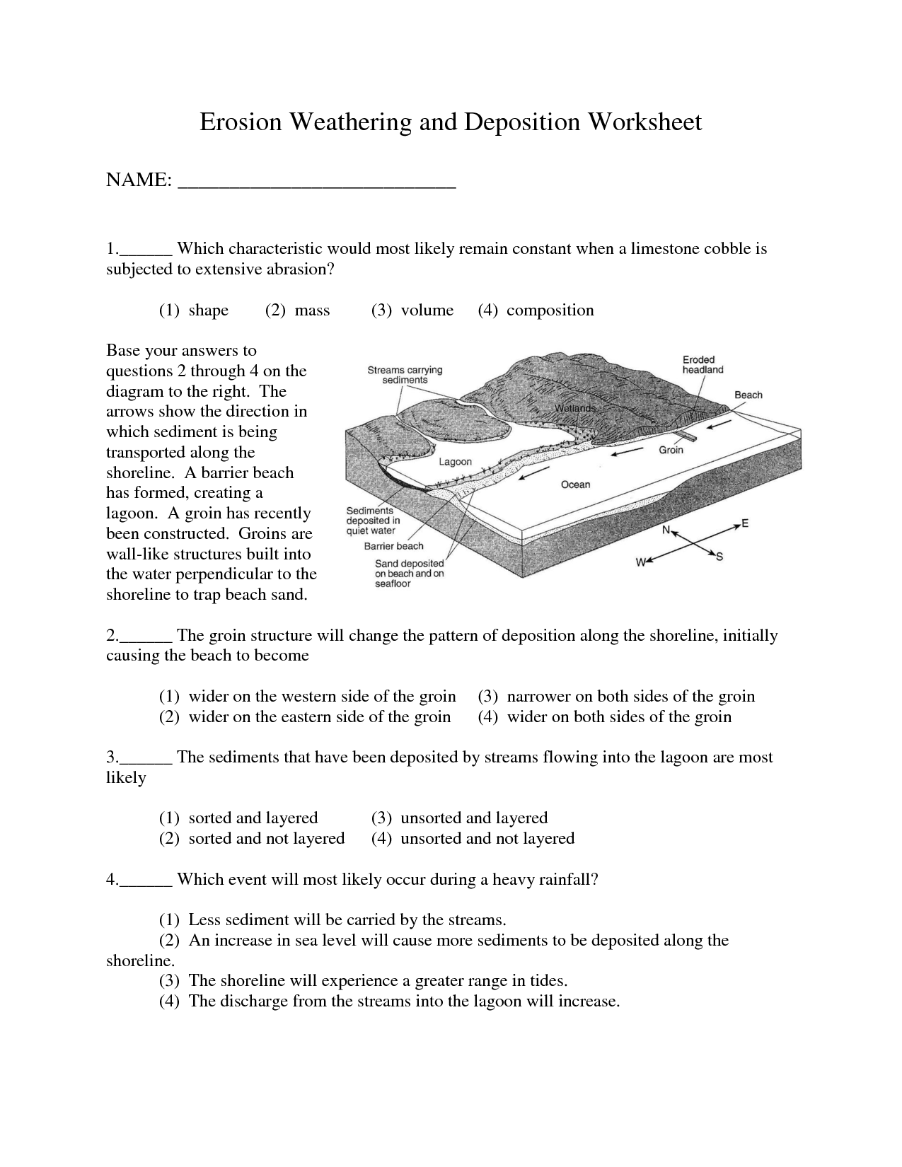 Life Soil Worksheet