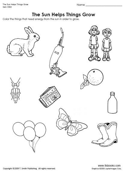 19 Best Images Of Plant Worksheets For Kindergarten Free