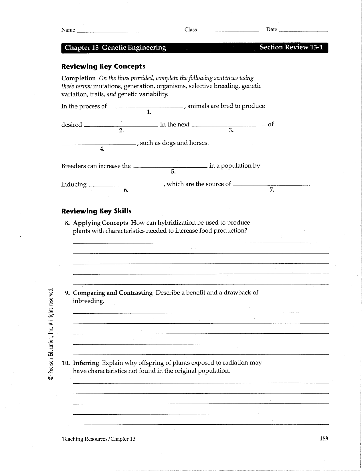 13 Best Images Of Review Worksheets With Answer Key