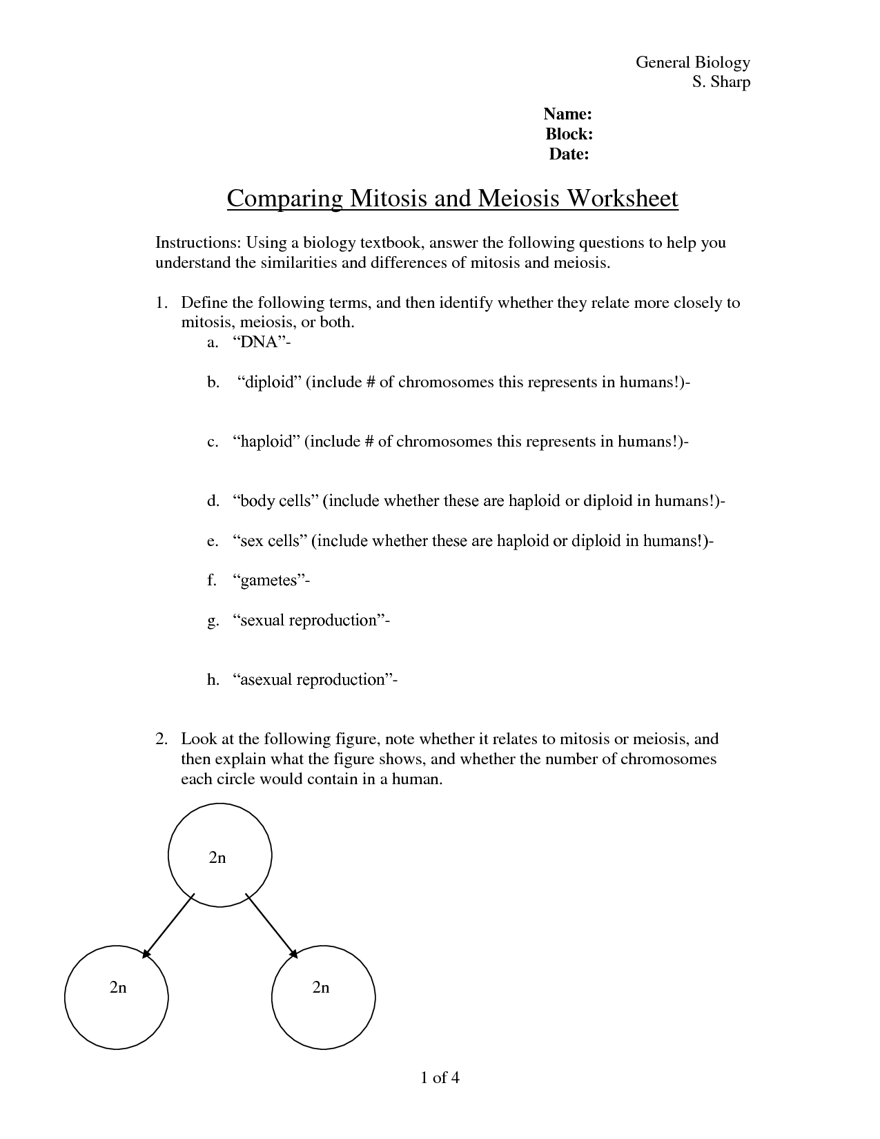 13 Best Images Of Comparing Mitosis And Meiosis Worksheet