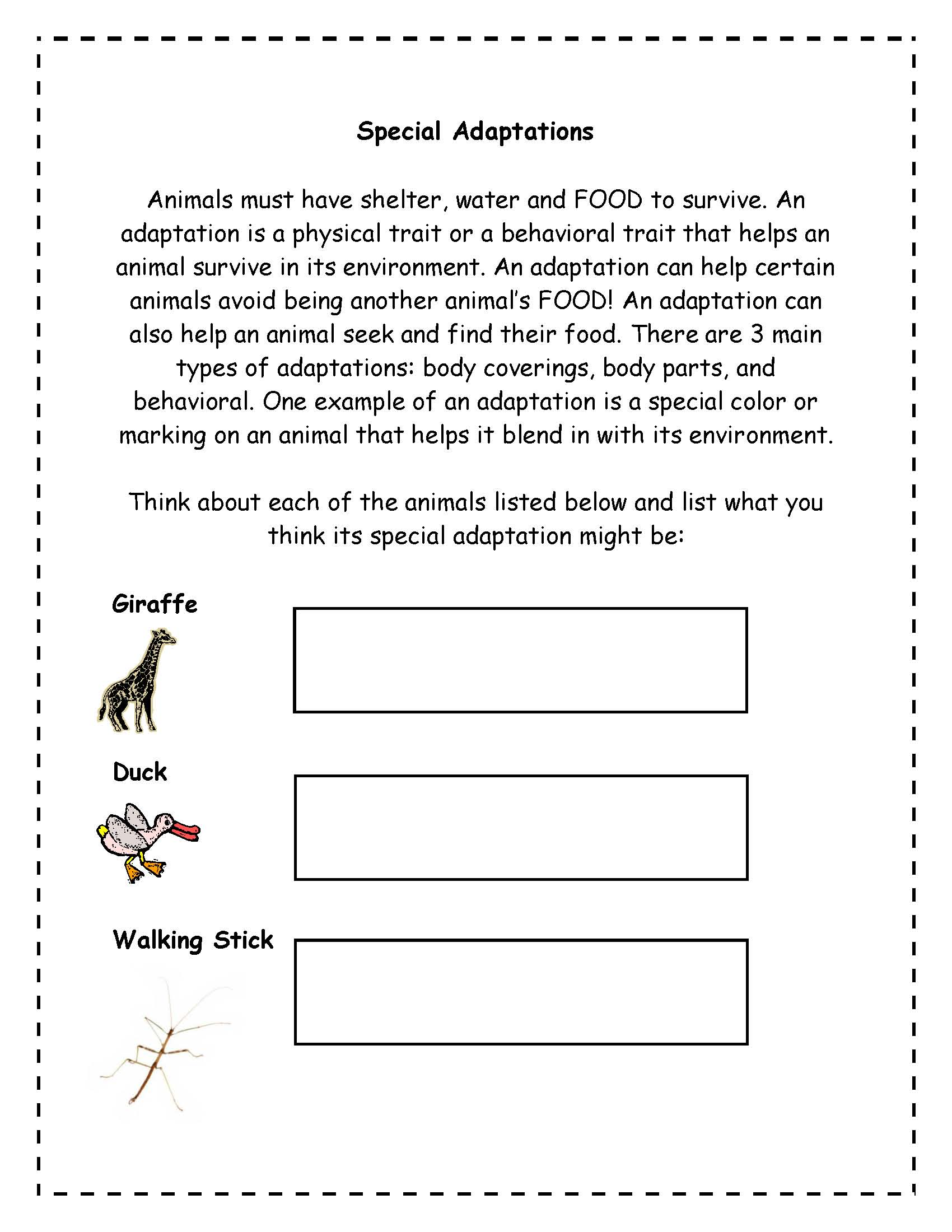 14 Best Images Of Animal Classification Worksheet