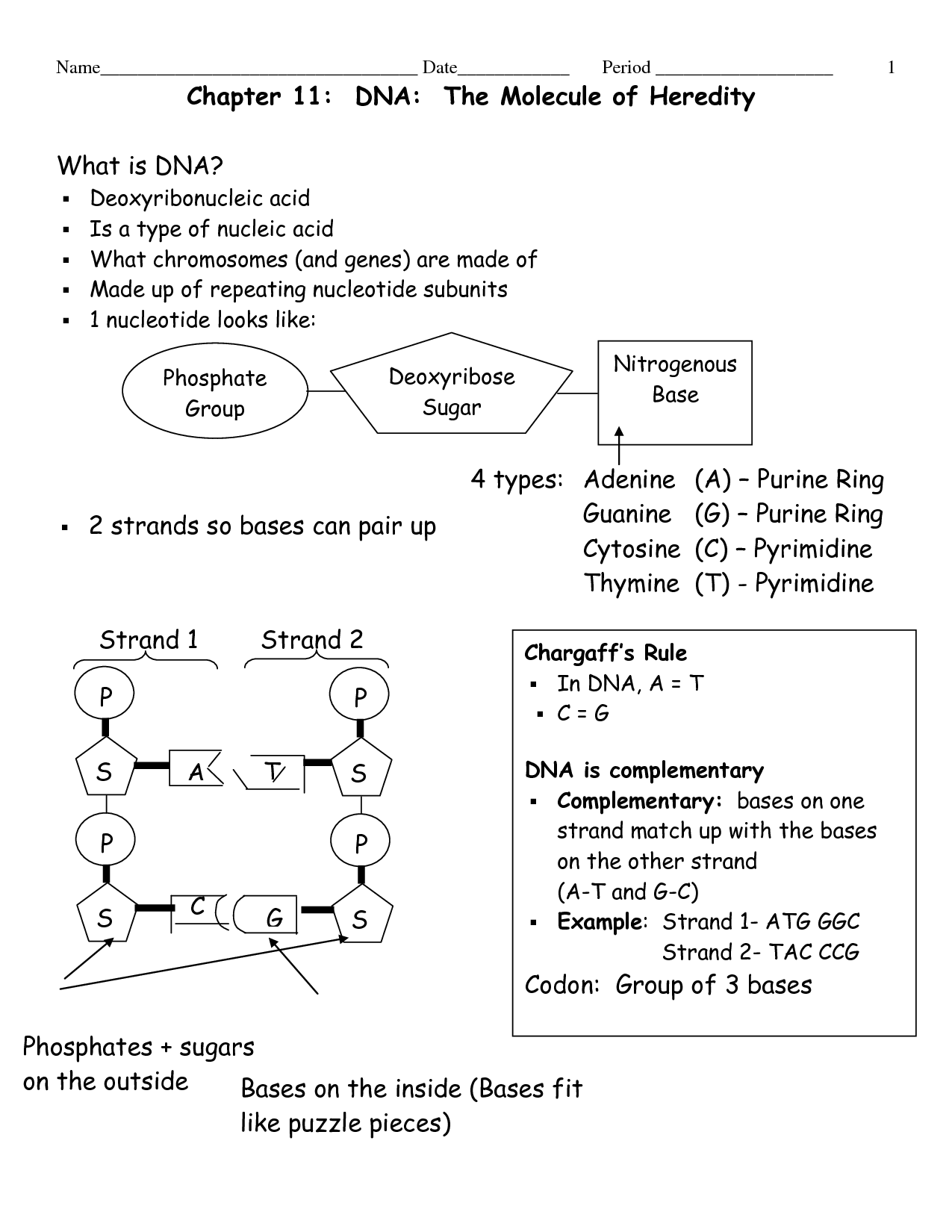Molecular Geometry Worksheet Answers Pogil