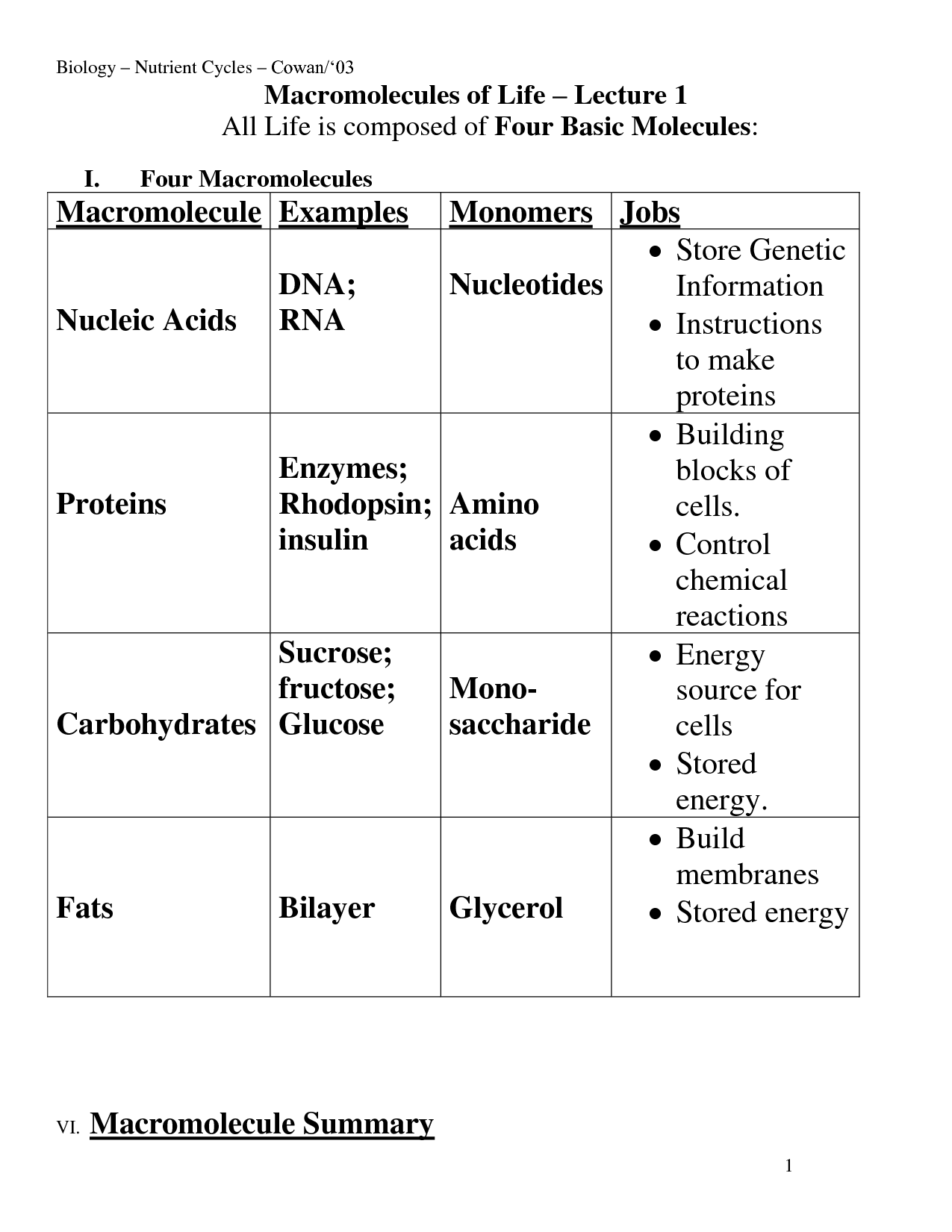 11 Best Images Of Basic Macromolecules Worksheet