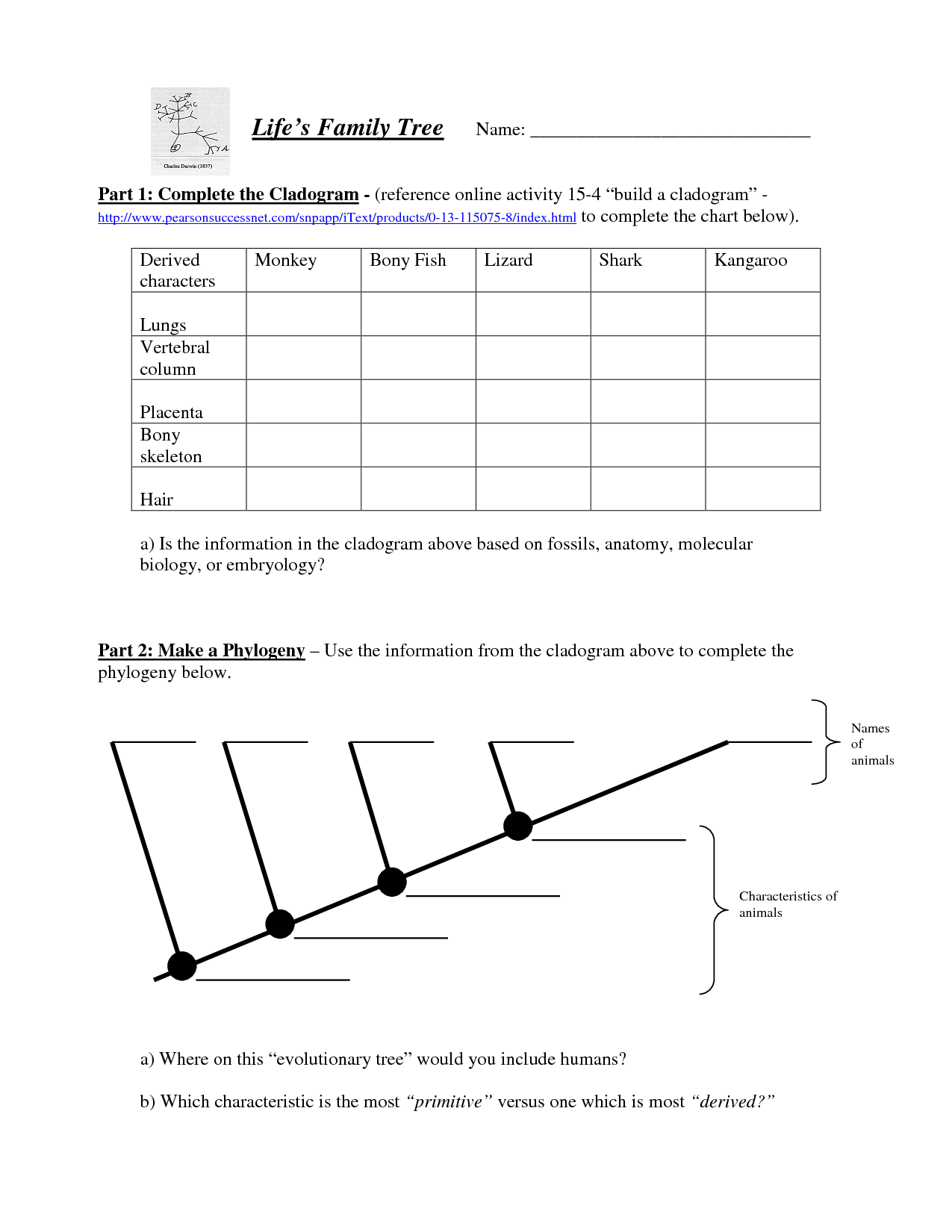 16 Best Images Of Family Life Worksheet Answers