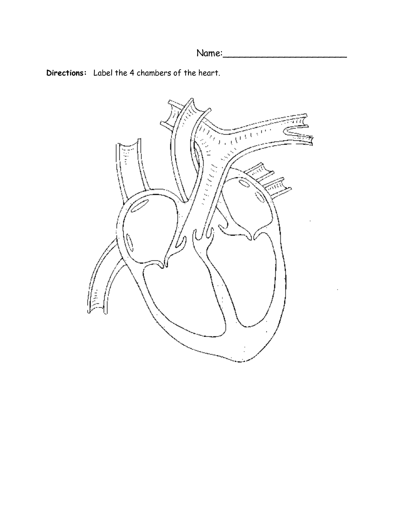 The Heart Labeling Worksheet For Kindergarten
