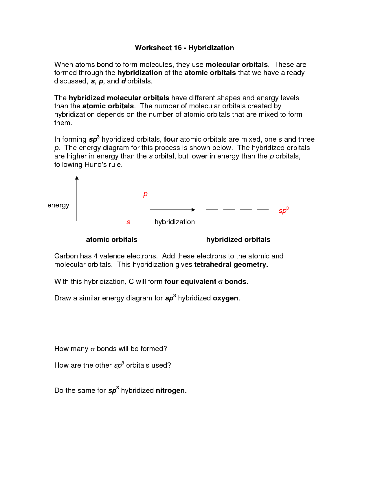 18 Best Images Of Molecules Of Life Worksheet