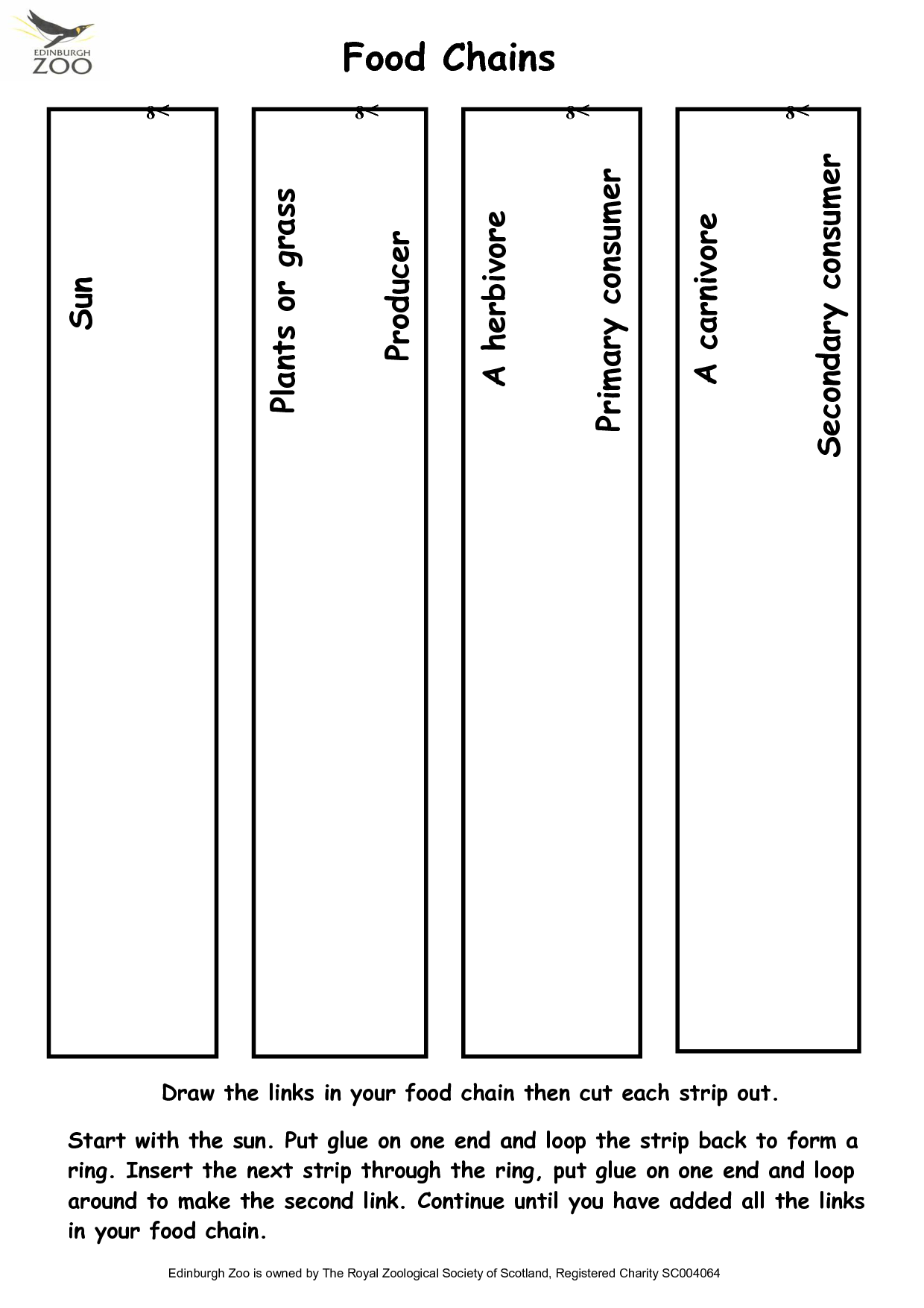 Food Web Worksheet For 2nd Grade
