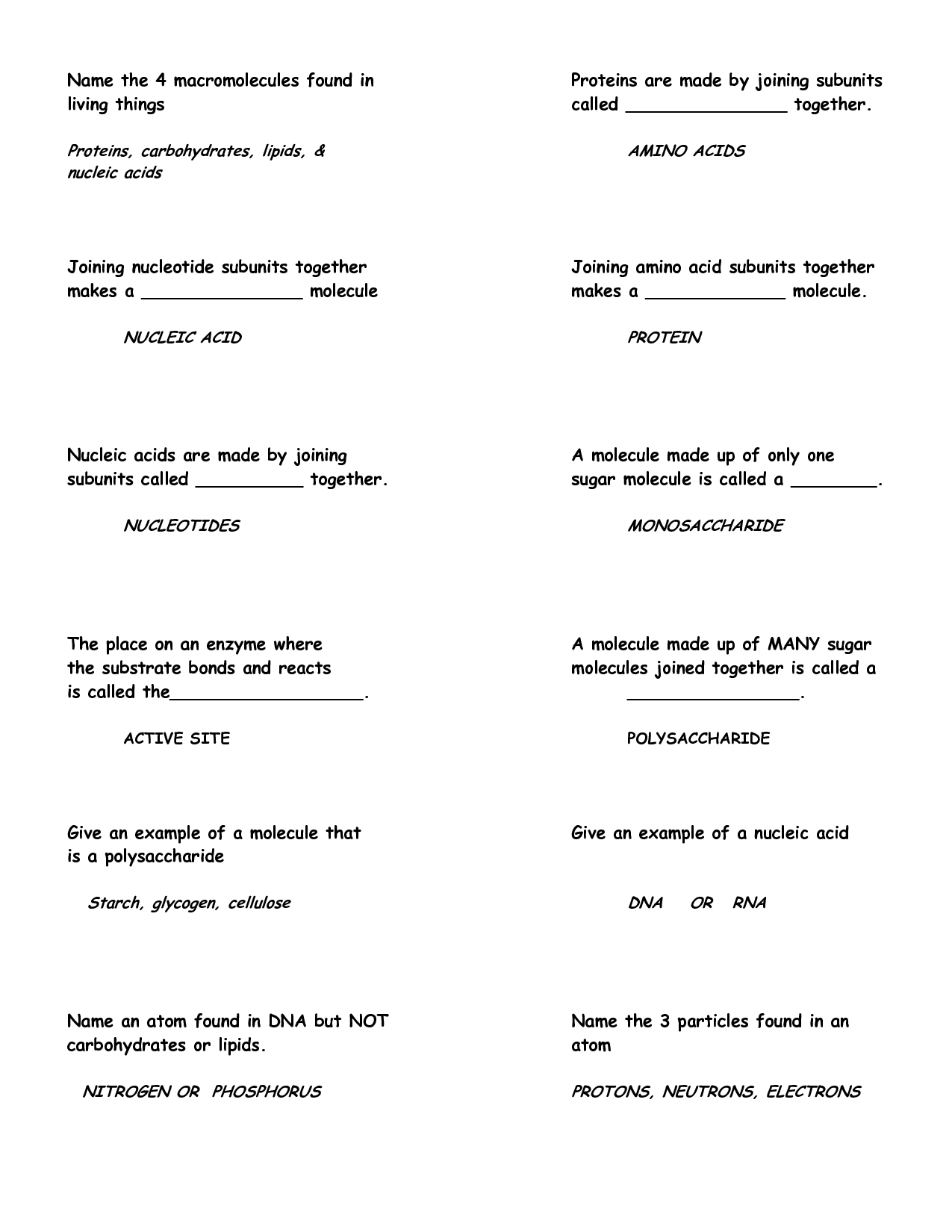 7 Best Images Of Identifying Macromolecules Worksheet