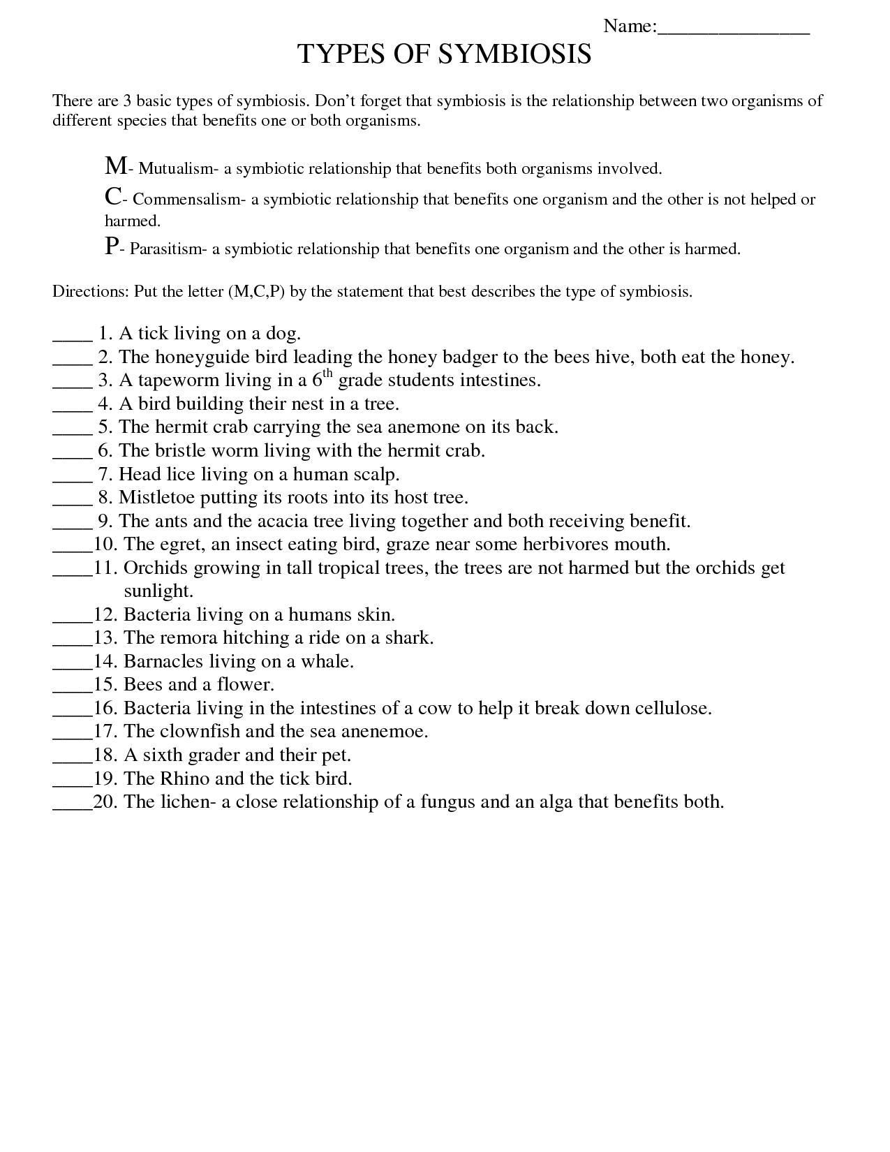 15 Best Images Of Printable Worksheets For High School