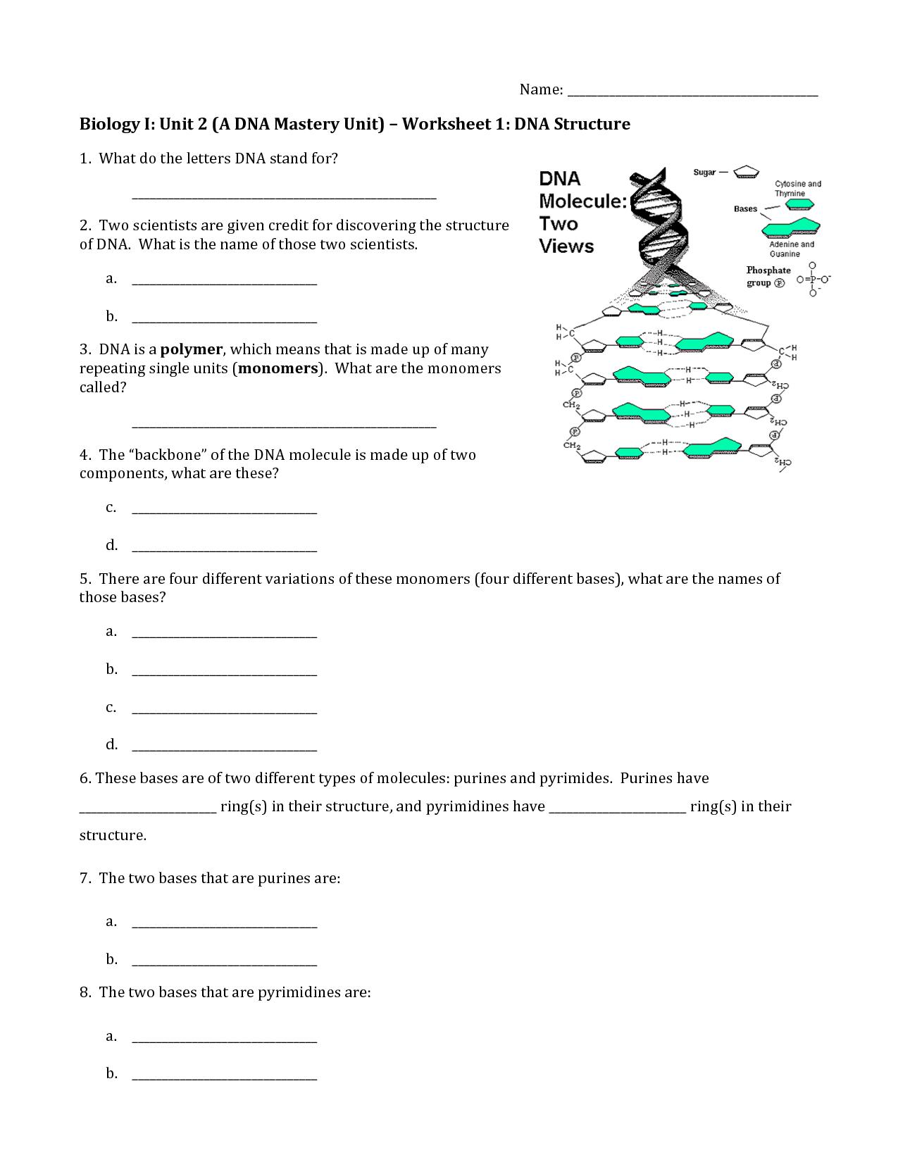 Dna The Molecule Of Heredity Worksheet Key