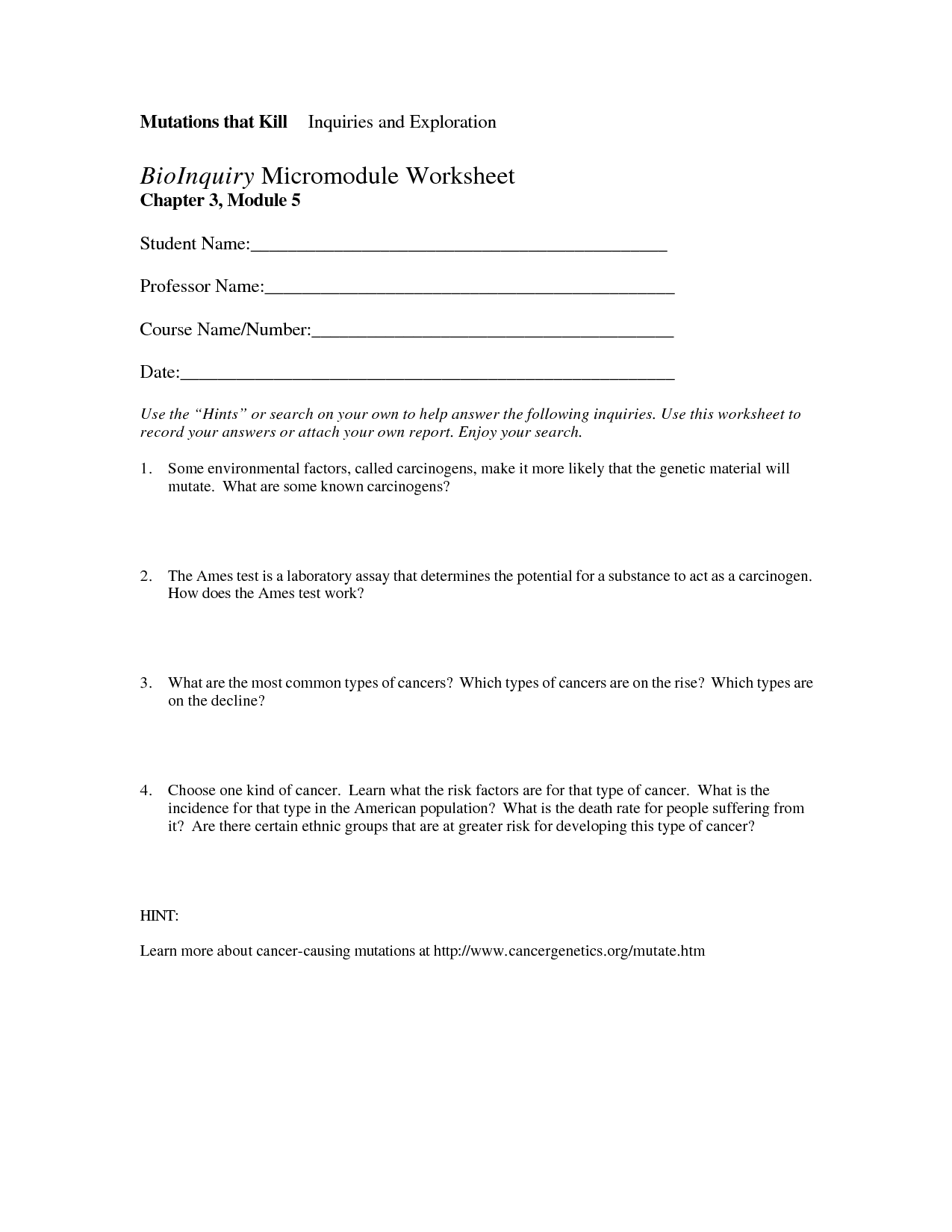 17 Best Images Of Career Exploration Worksheets