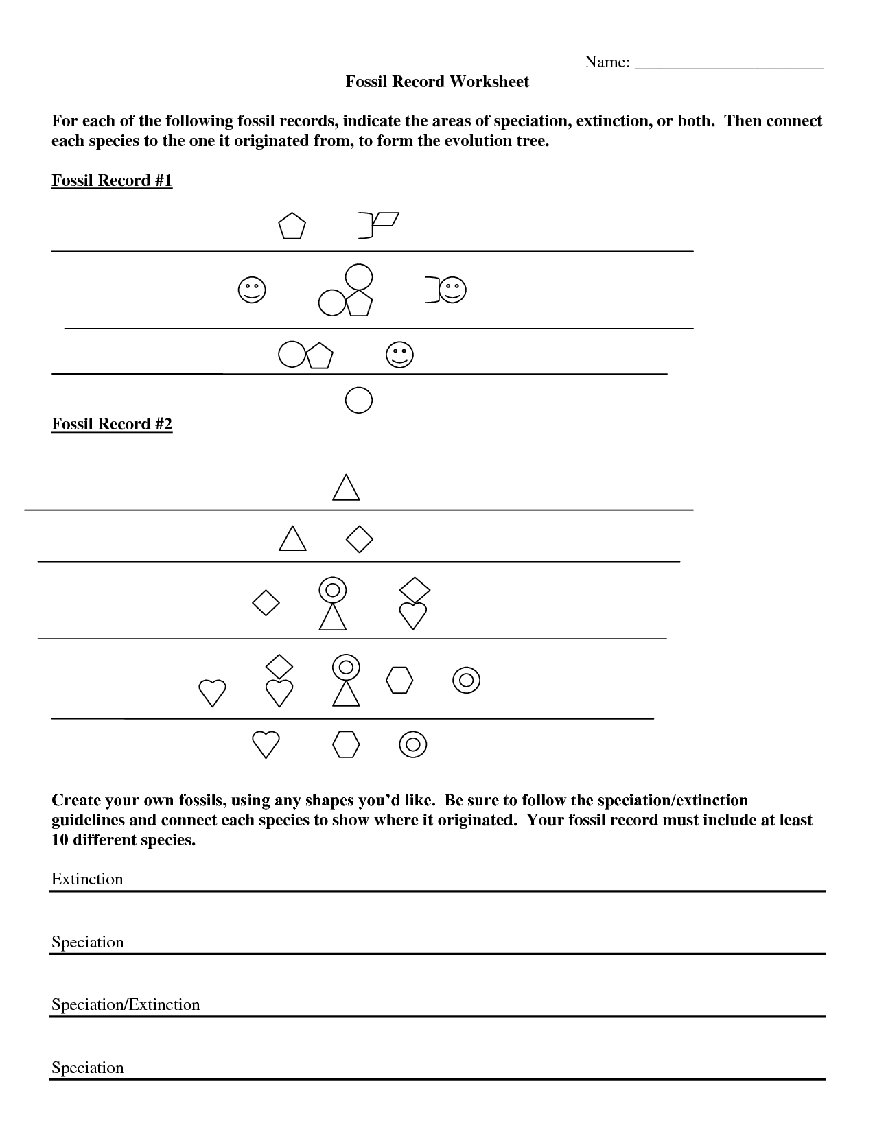 11 Best Images Of Fossils Activities Worksheets