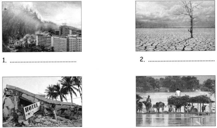 CBSE Class 5 EVS When the Earth Shook! Worksheets 3