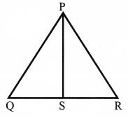 CBSE Class 6 Maths Basic Geometrical Ideas Worksheets 8