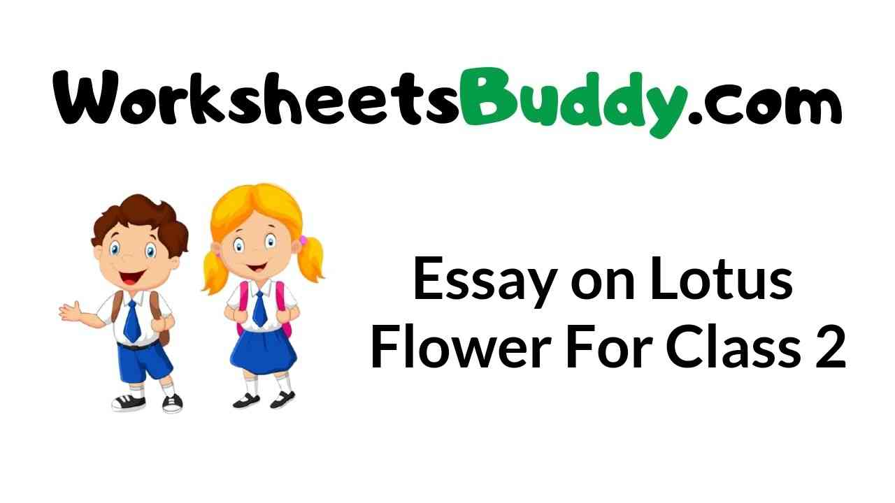 essay-on-lotus-flower-for-class-2