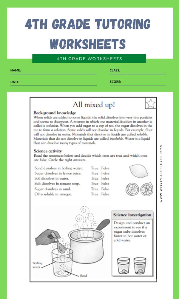 4th Grade Tutoring Worksheets 7
