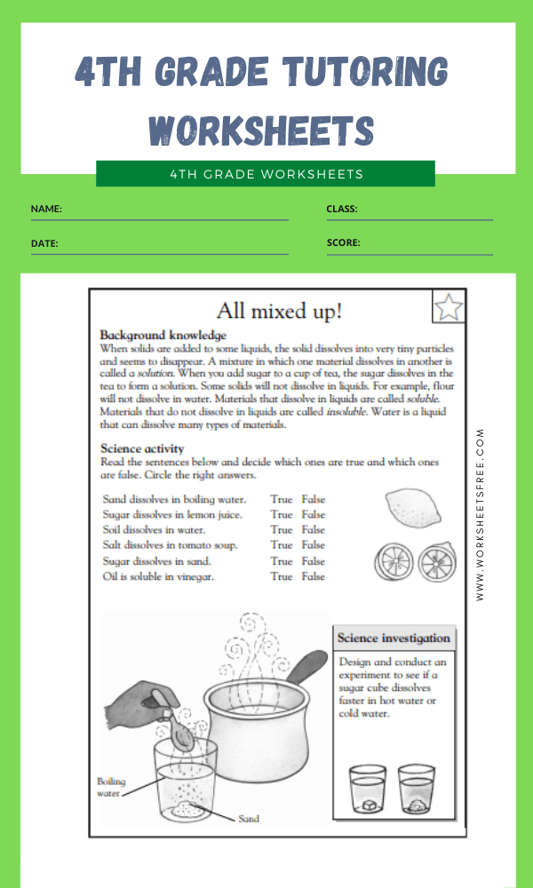 4th Grade Tutoring Worksheets 7