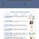 5th grade science worksheets with answer key7